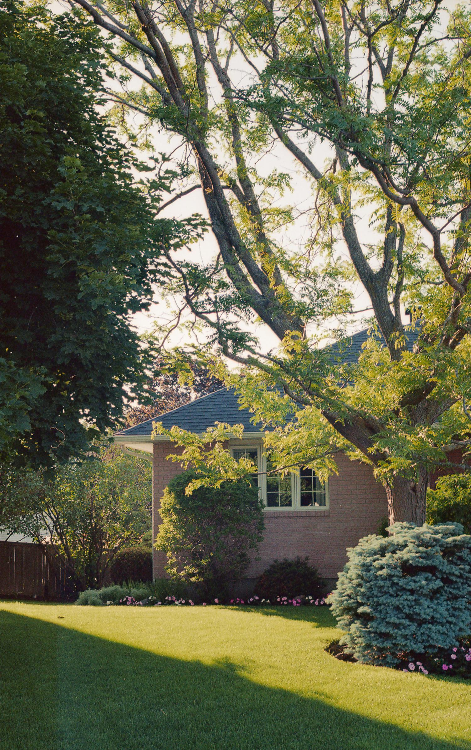 Schofield-Ashton-Nature-Suburbia-15.jpg