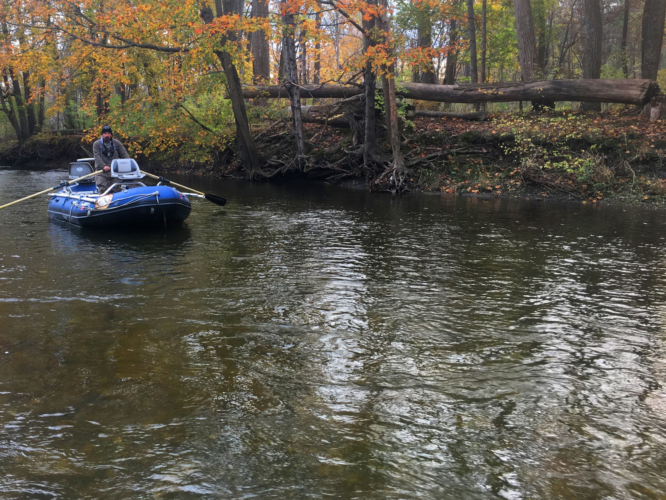 Guided Fly Fishing - Driftboat or wade the Farmington River and area streams
