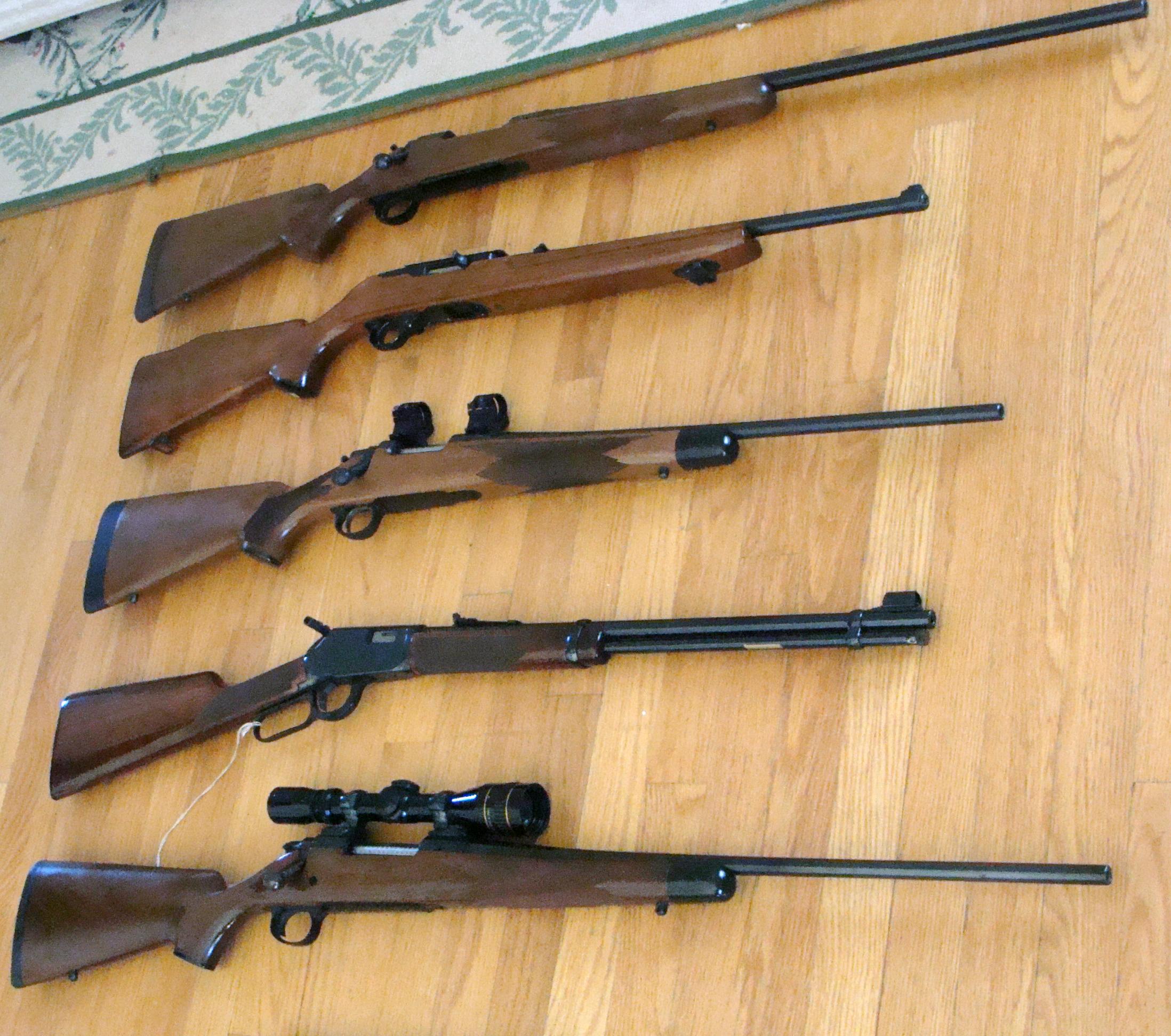 Miscellaneous Rifles.jpg
