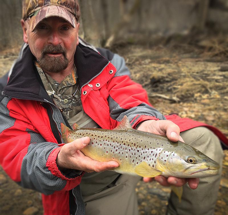 farmington-river-trading-company-march-brown-trout.jpg