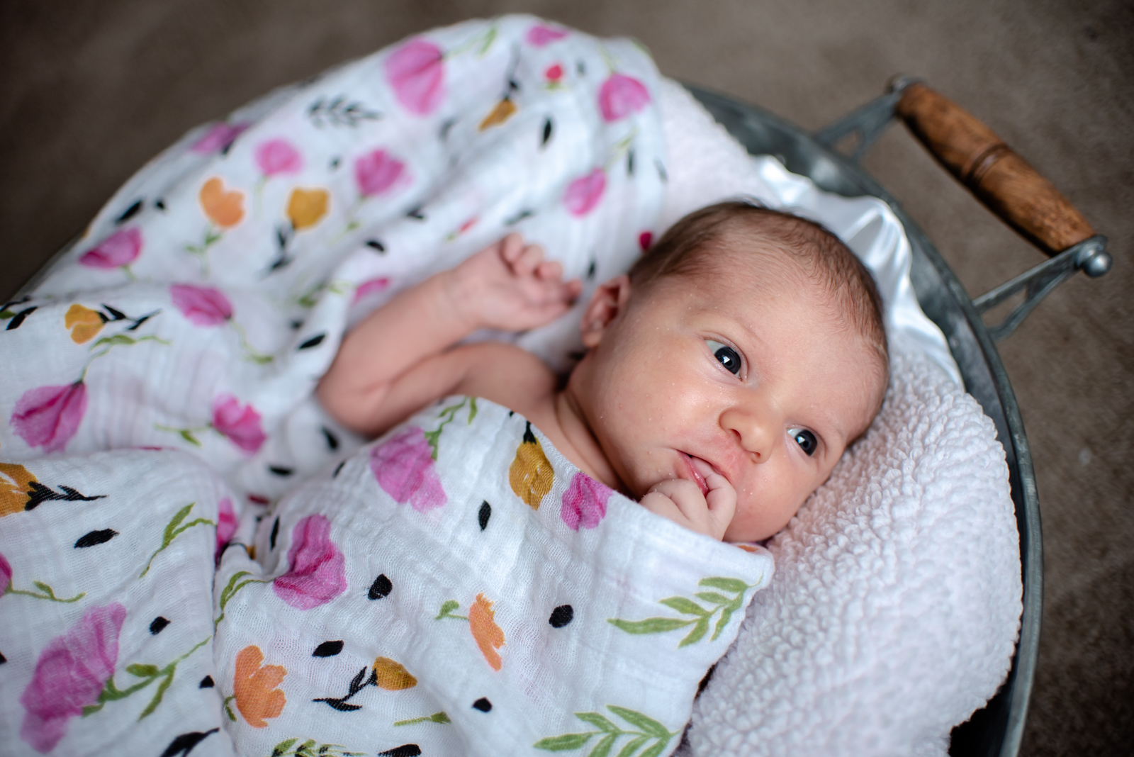 Charlotte Newborn-215.jpg