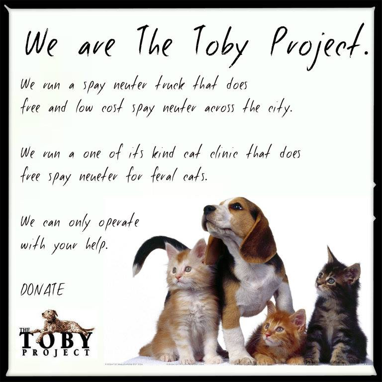 - http://www.tobyproject.org/