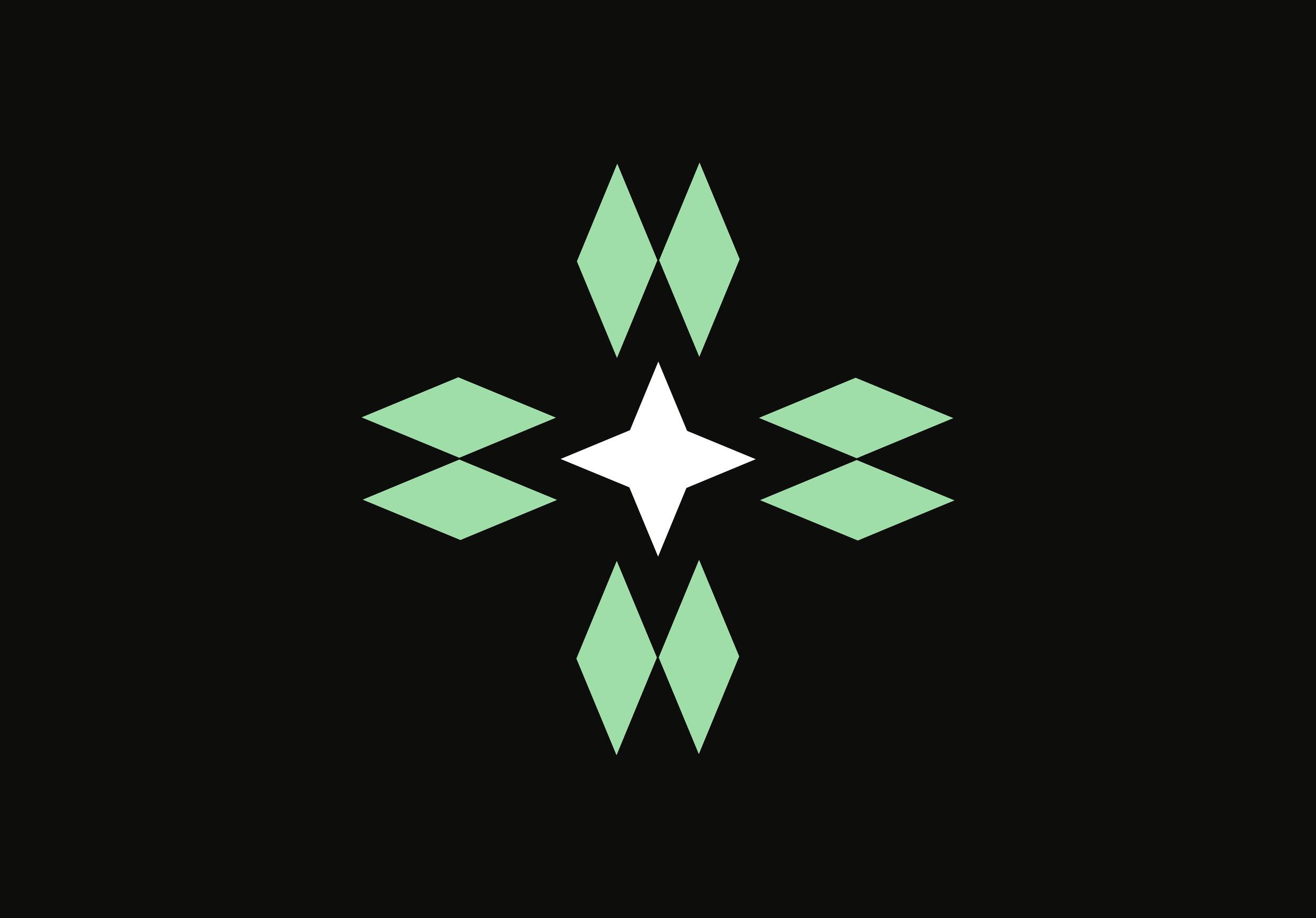 NorthStar_DiamondStar_Logo_Mark_(Wh_Color).jpg