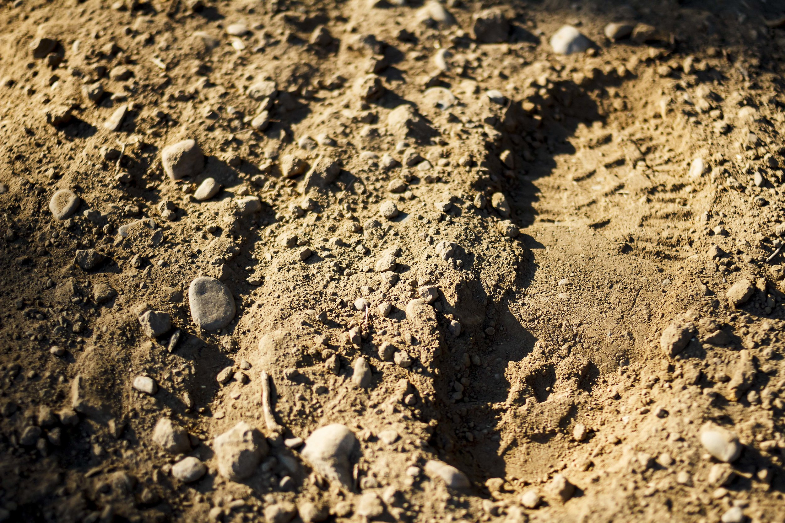 Footprint Select Botanicals Group Yakima Hop Farmers