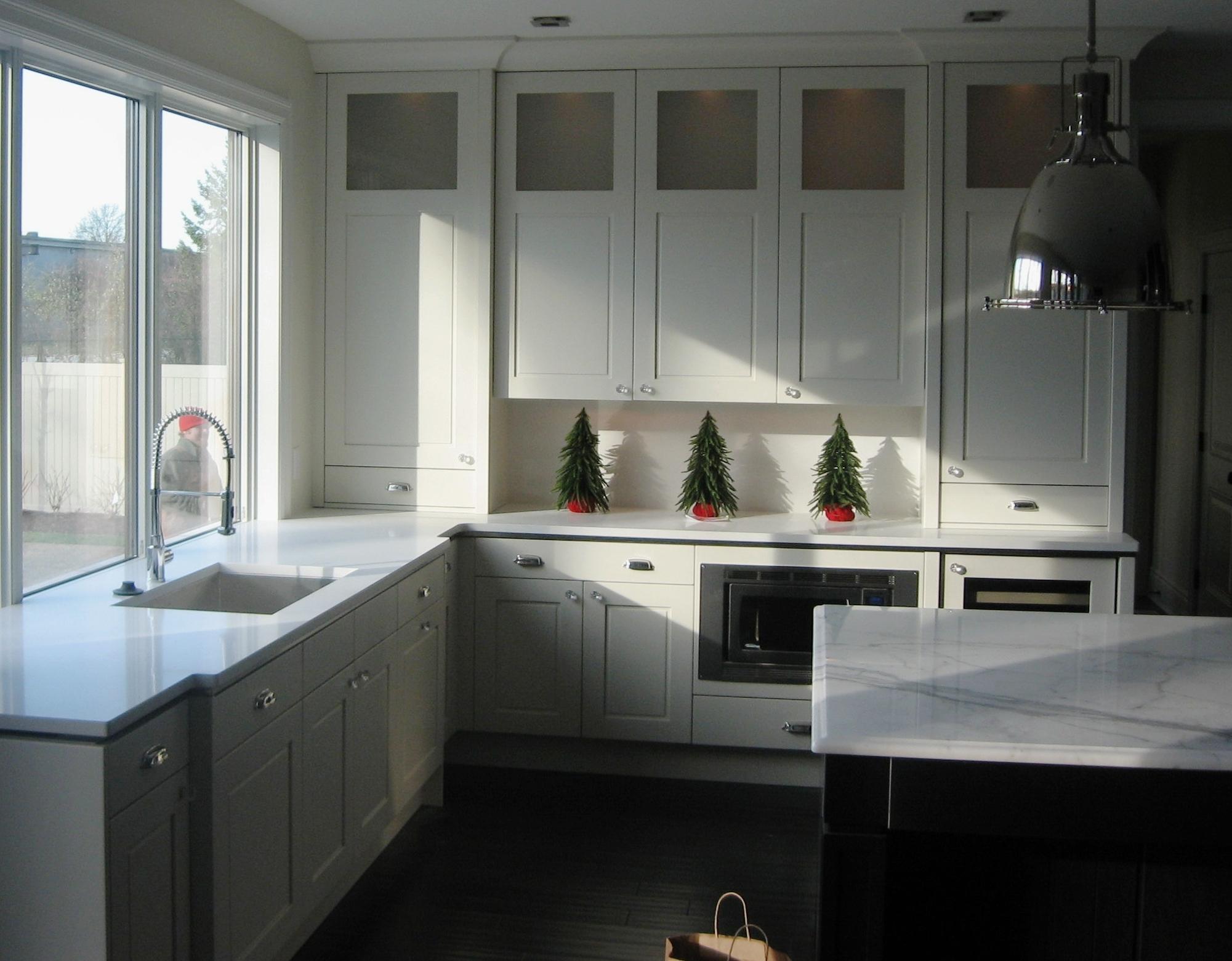 Kitchen Carrara Marble countertop island quartz countertop Woodlook tile floor modern ideas inspiration.jpg