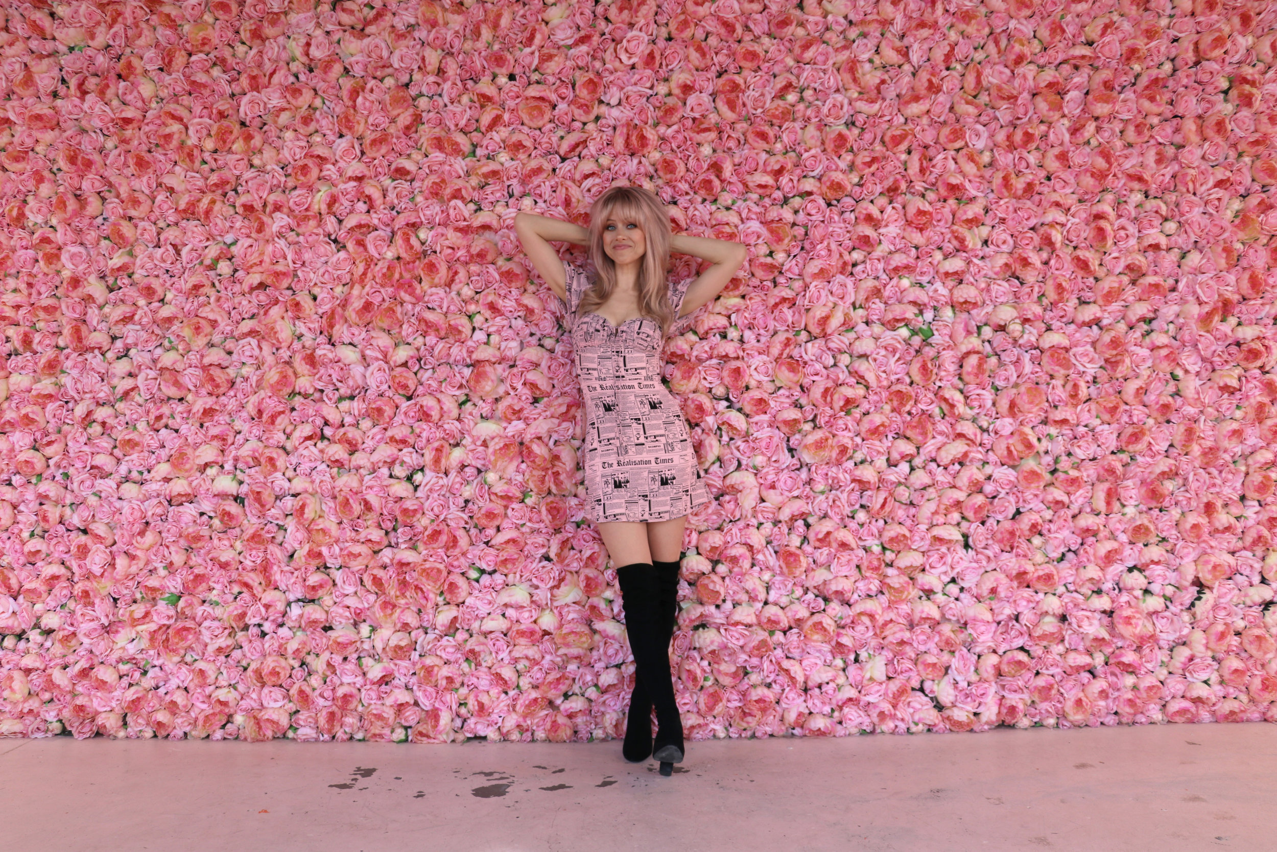 Superholly flower vault rose wall