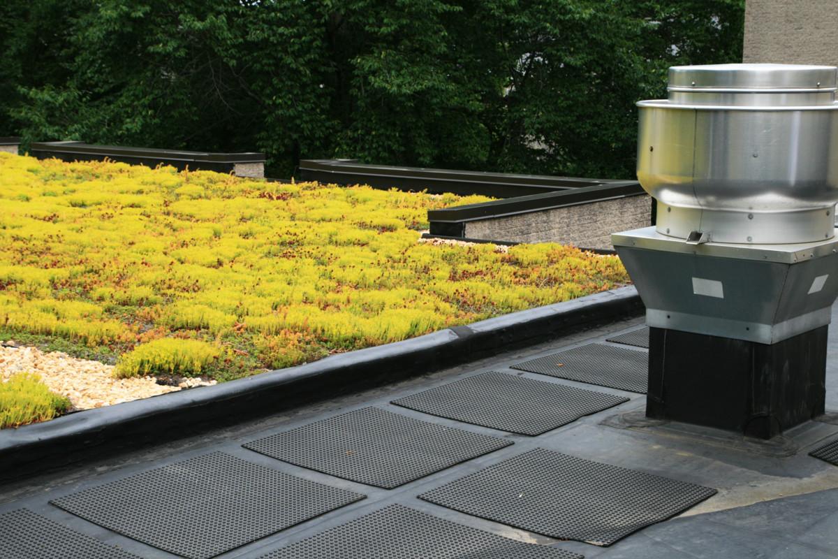 Green-Roof-Installation-Service-Near-You-in-Michigan.jpg