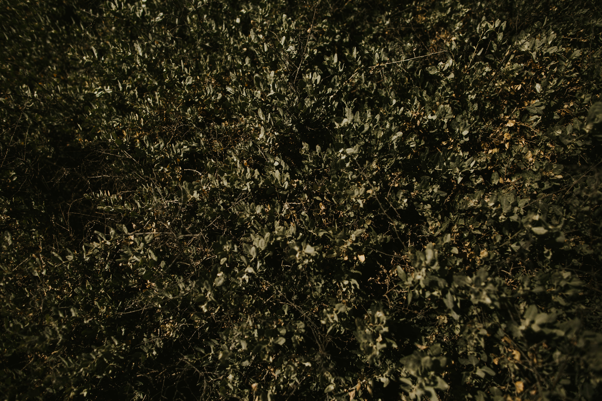madelinebrody_blog_KO-149.jpg