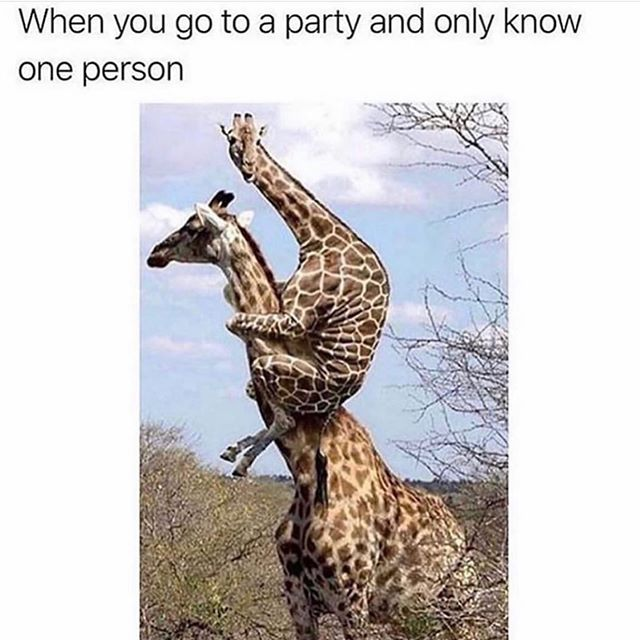 Don't leave me. 🦒