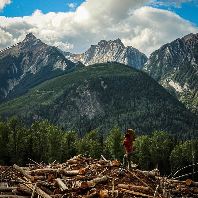 Camp update, Yesterday we collected firewood in the most beautiful place you could ever hope to collect firewood!  And then we waited out the most gnarly storm we have seen yet.  This place is so cool!  #campmoosetrail . . . #goldenbc #goldenrules #bc #camping #yyc #banff #canmore #campvibes #mountains #campingbc #yohonationalpark