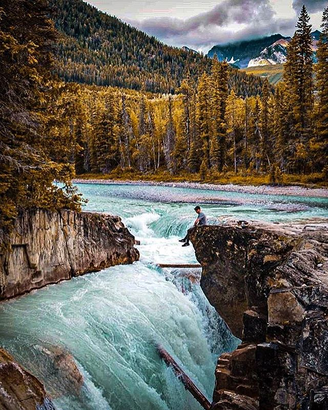 Things you won't find at Thompson falls: crowds or tour buses.  Things you might find at Thompson falls: amazing views, Wild life and an incredible water fall! Photo @shanemuegge  #campmoosetrail . . . #goldenbc #goldenrules #camping #yohonationalpark #banffnationalpark #canada #explorecanada #explorebc #campvibes #camp #waterfall