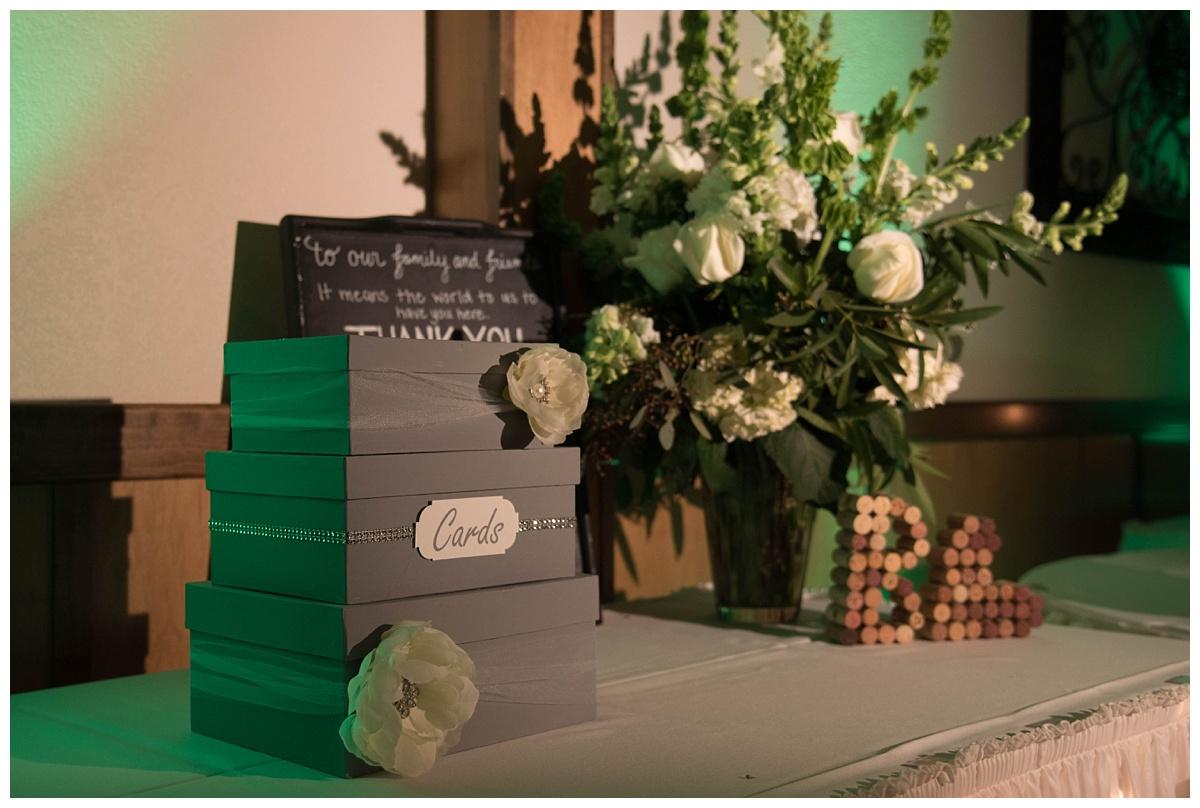 University of Wisconsin Green Bay Wedding Photos_0045.jpg