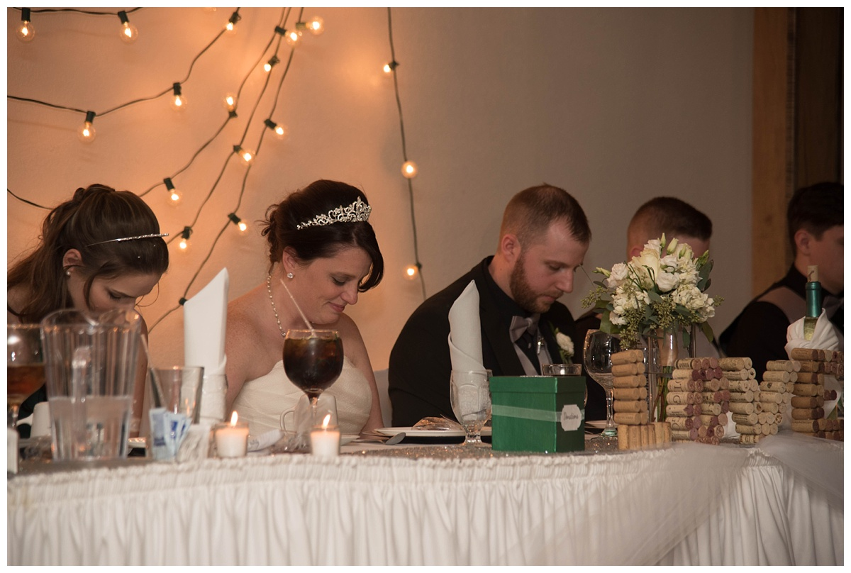 University of Wisconsin Green Bay Wedding Photos_0051.jpg