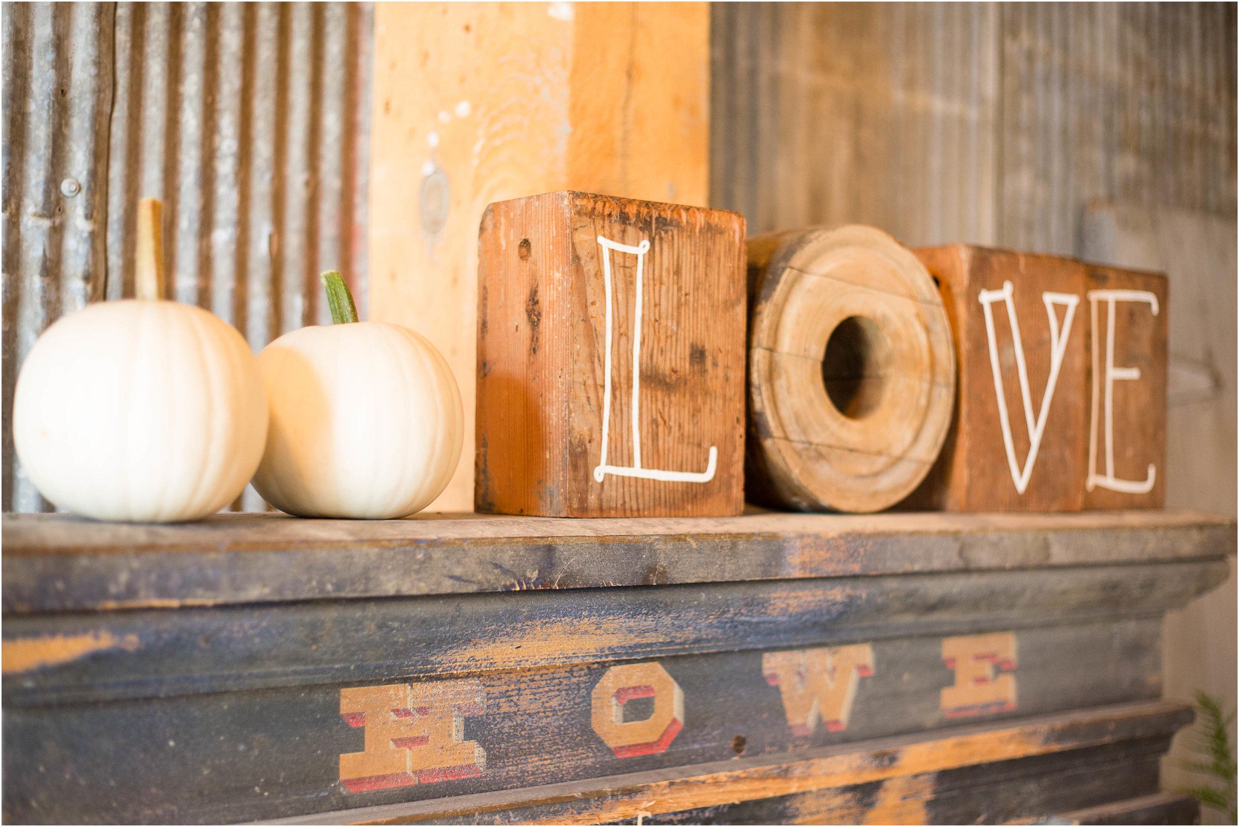 Carstens Mill Wedding_29_3.jpg