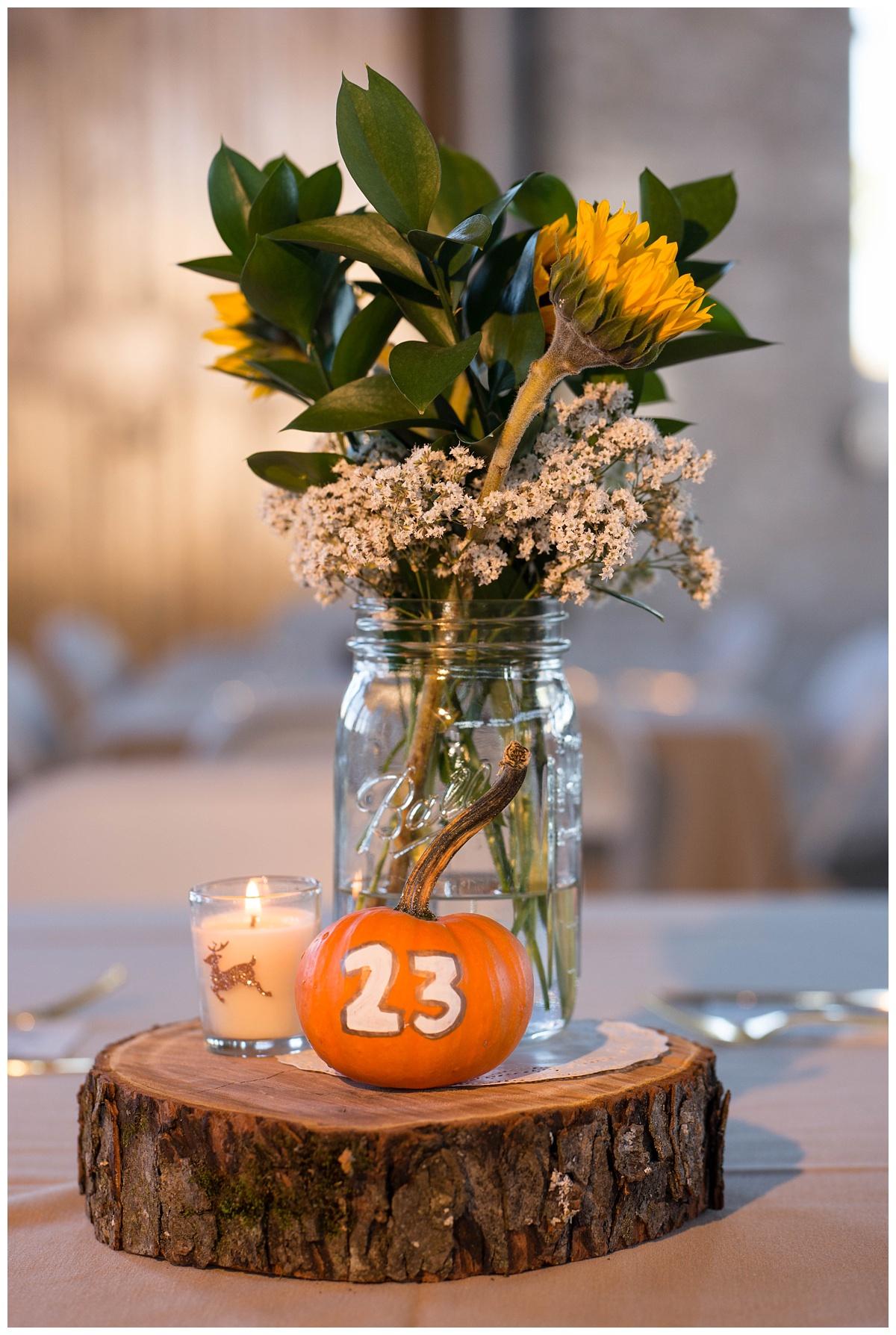 Fall Wedding at Lakehaven Kewaunee WI_0039.jpg