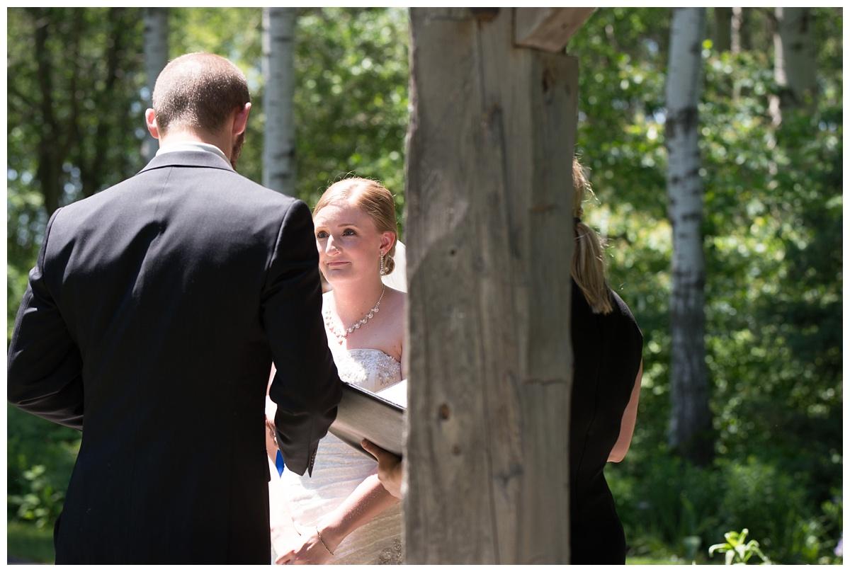Green Bay Botanical Gardens Summer Wedding_0030.jpg