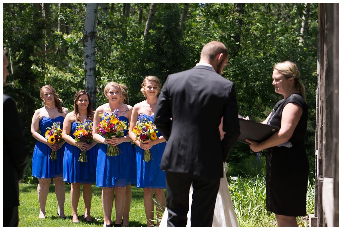 Green Bay Botanical Gardens Summer Wedding_0029.jpg
