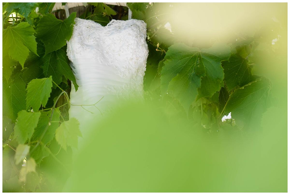 Green Bay Wedding at The Ravine_0013.jpg