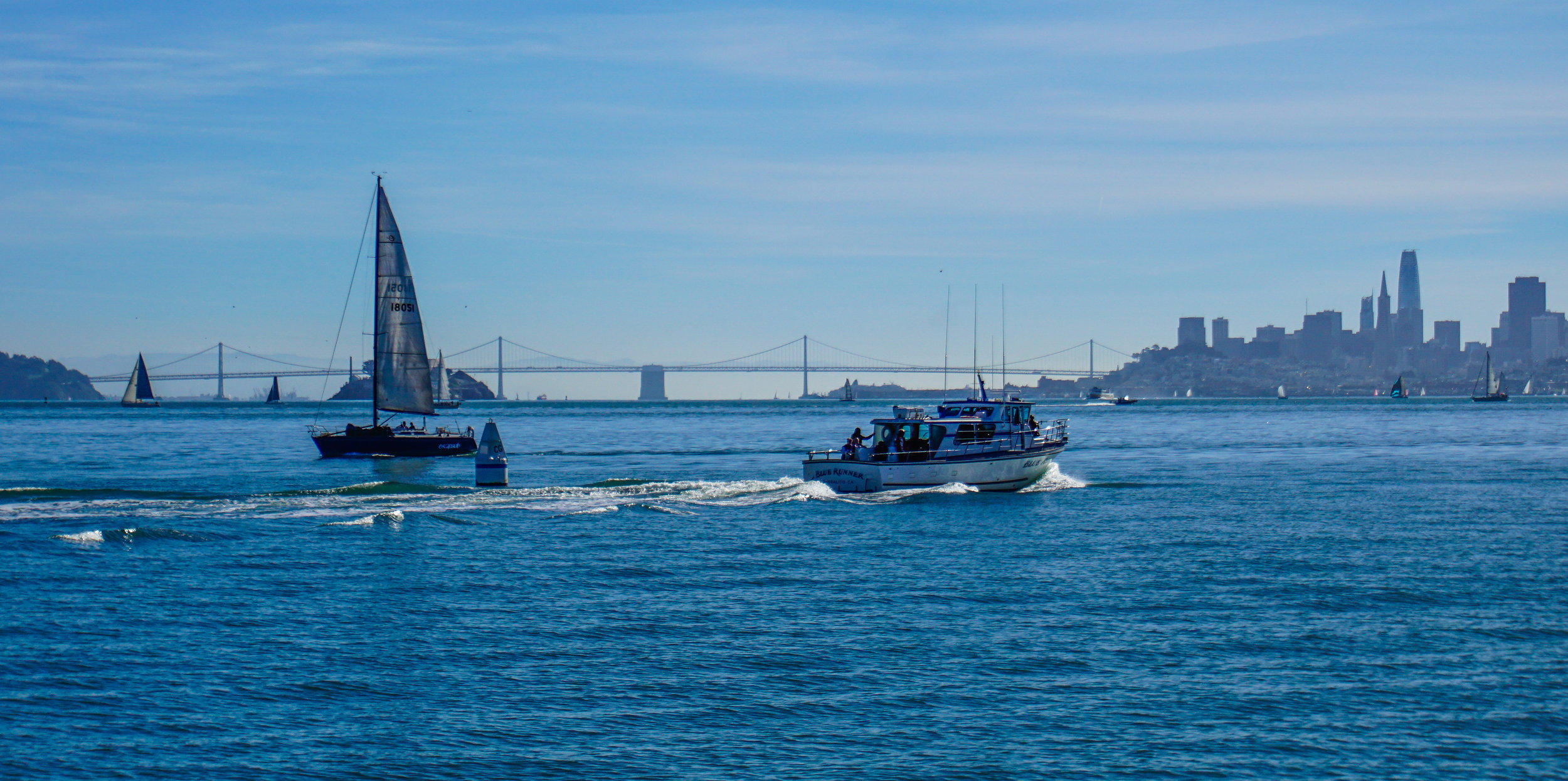 San Francisco, you're just as pretty from the water as you are on land.