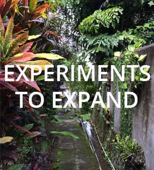 Experiments to expand-1.jpg