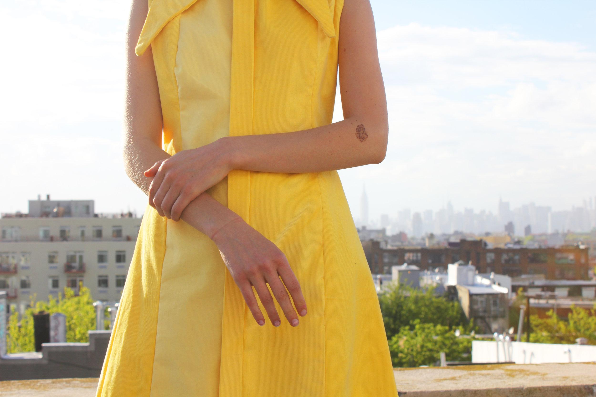 yellow 10.jpg