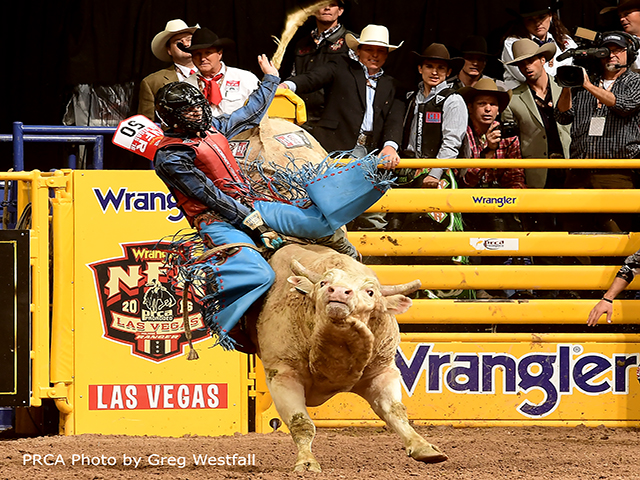 Three Time NFR Qualifier Roscoe Jarboe - New Plymouth, Idaho