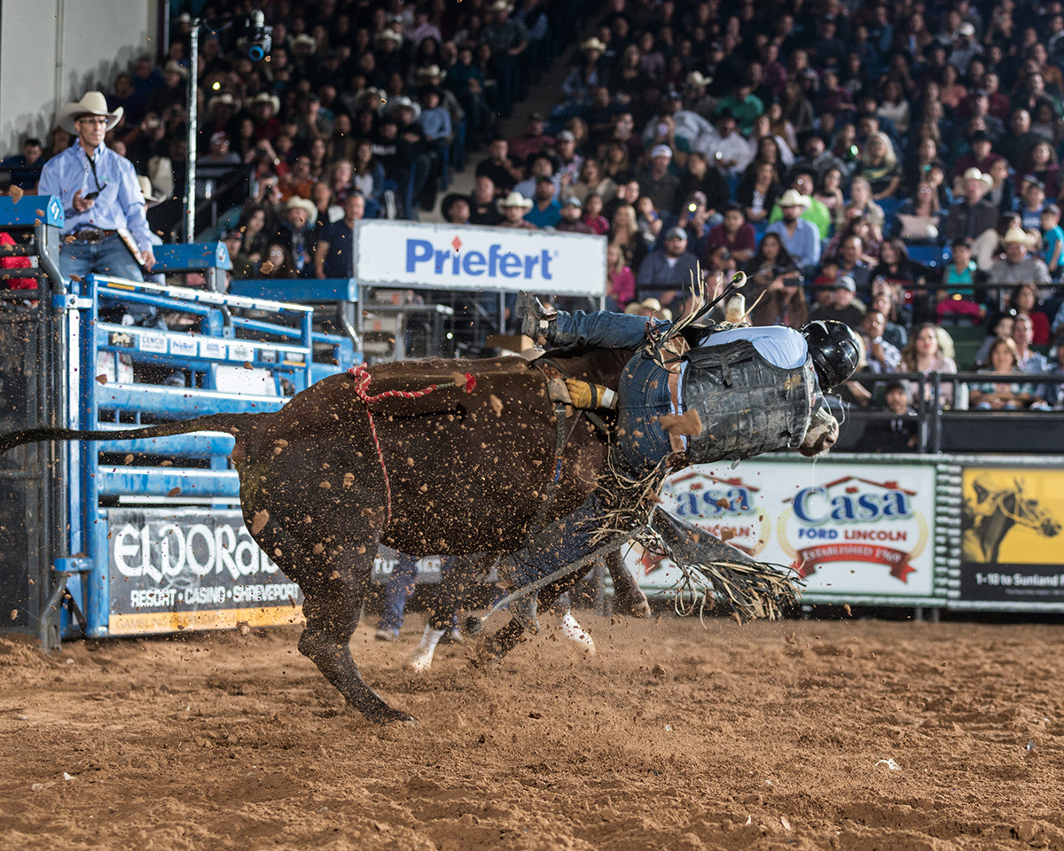 $75,000 in prize money to the animal athletes and their owners brings Extreme Bull power to Hobbs