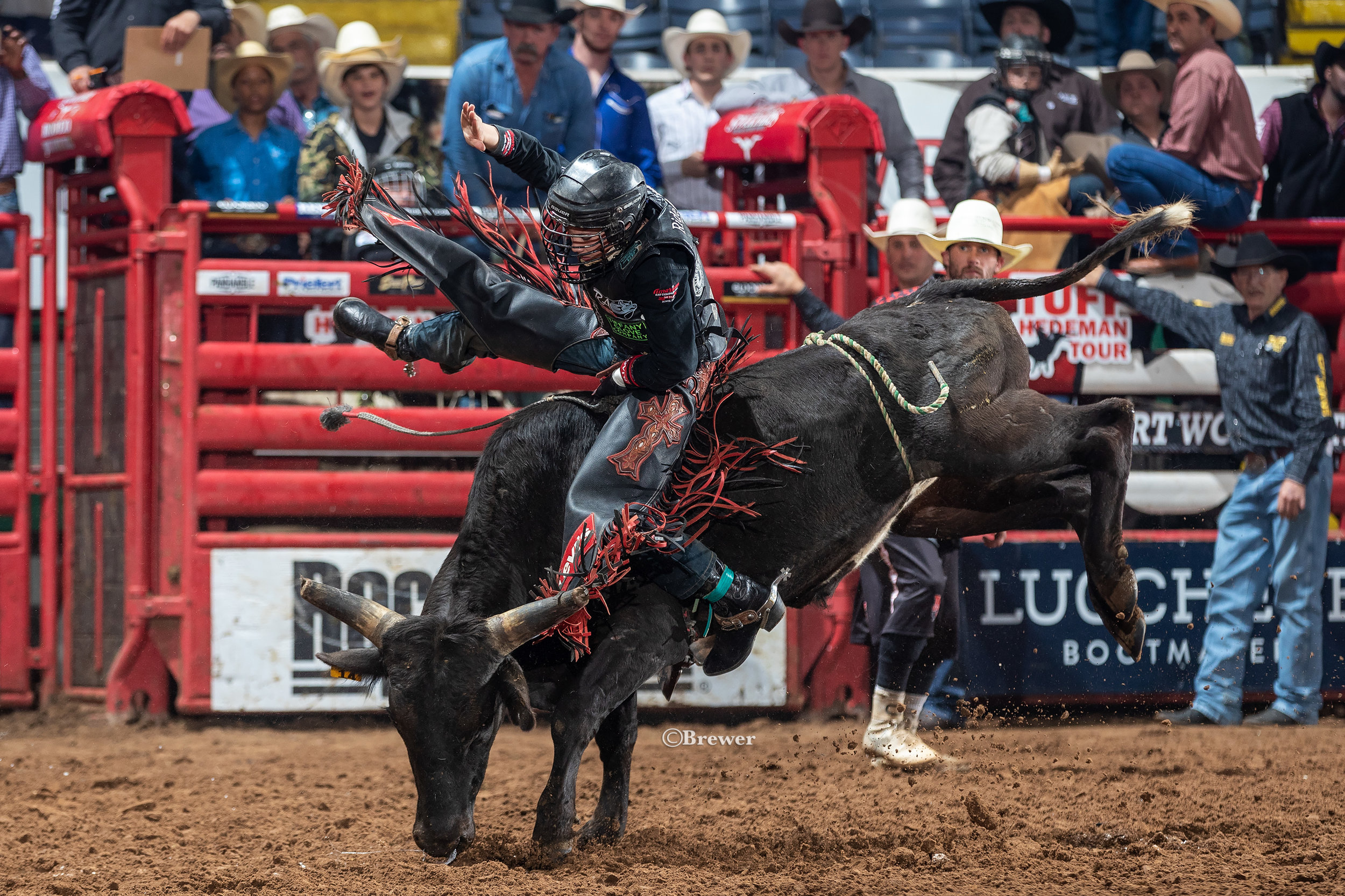 Steer Rider John Crimber takes the Cripple Creek Junior title this year in Fort Worth