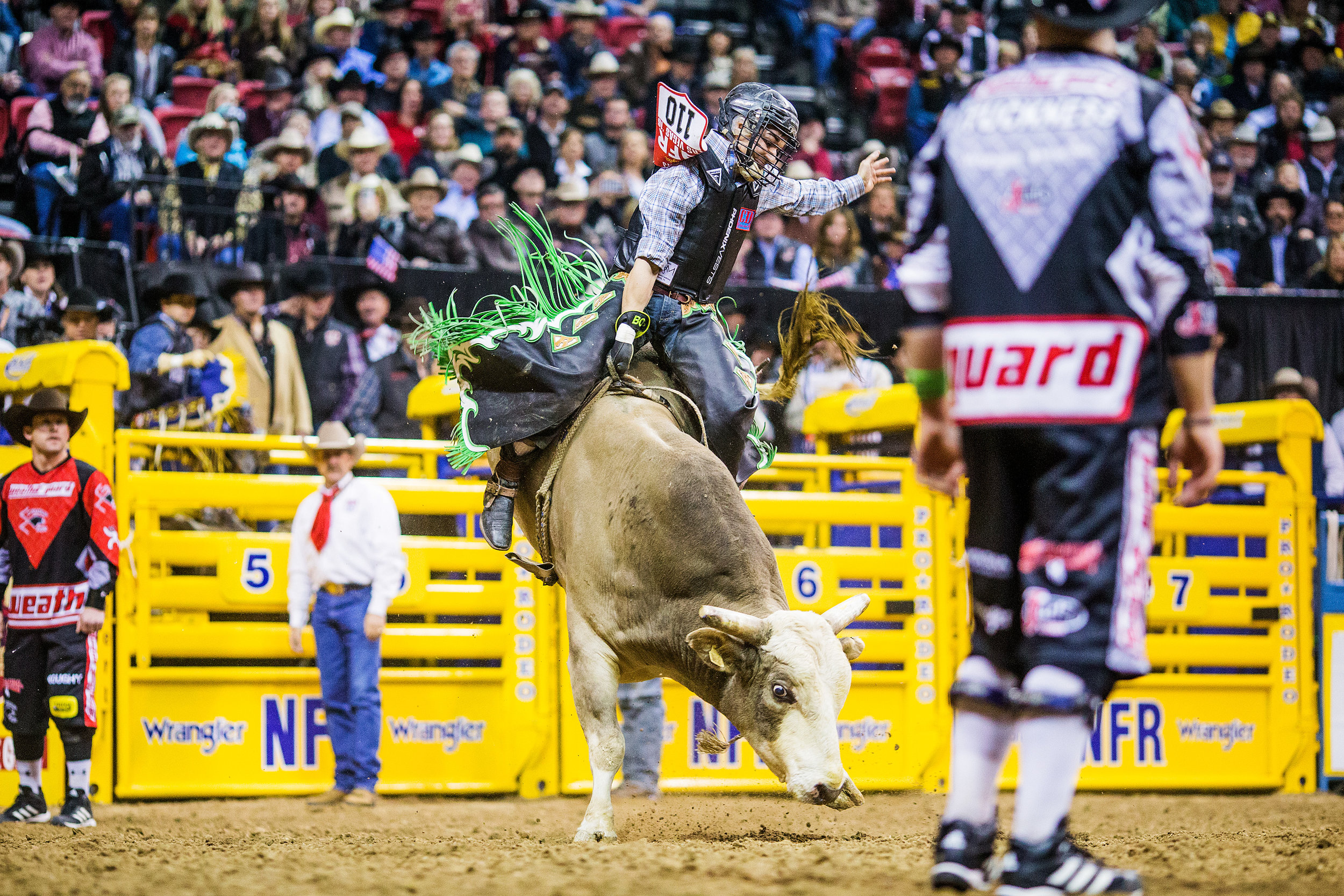 Rostoscyj on Andrews Monkey Punch at the 2016 Nationals Finals Rodeo where he split the Round 7 win.