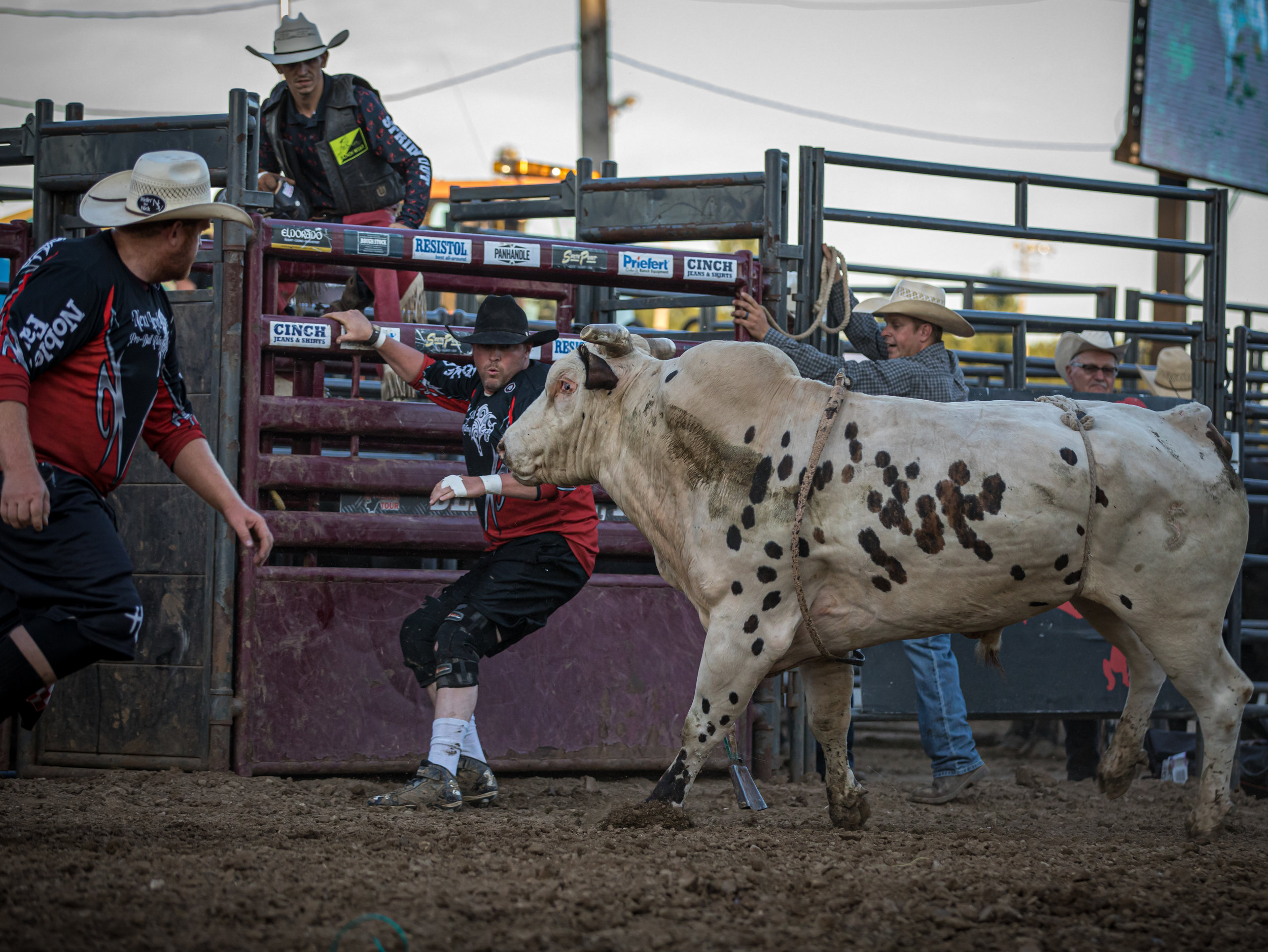 Bullfighters Josh Jacobs and Caleb Osternryk.   Photo by Doug Wade