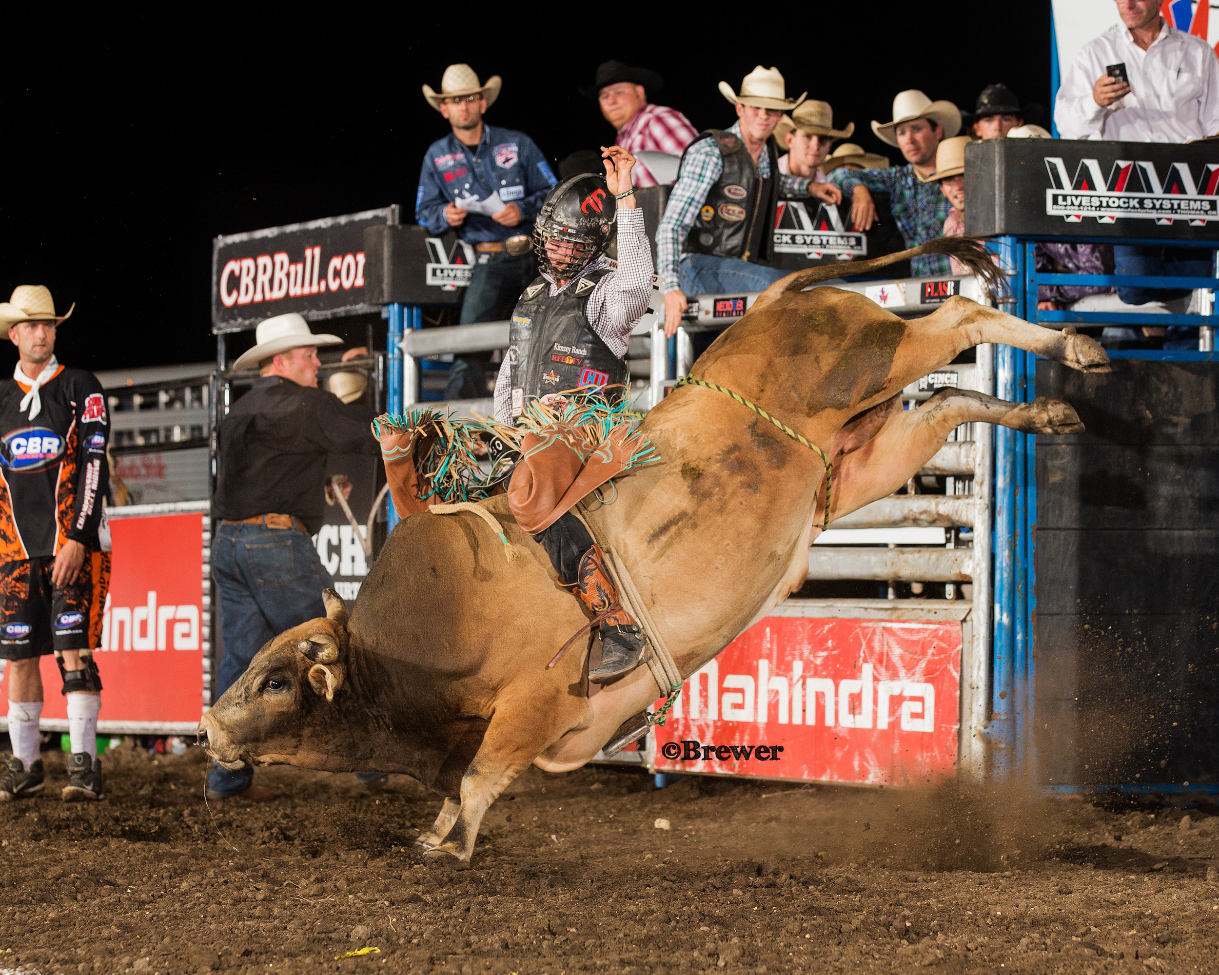 5-time PRCA World Champion Bull Rider, Sage Kimzey was the 2015 Red Wilk Champ. Photographed on Jeff Harris' Shorty.