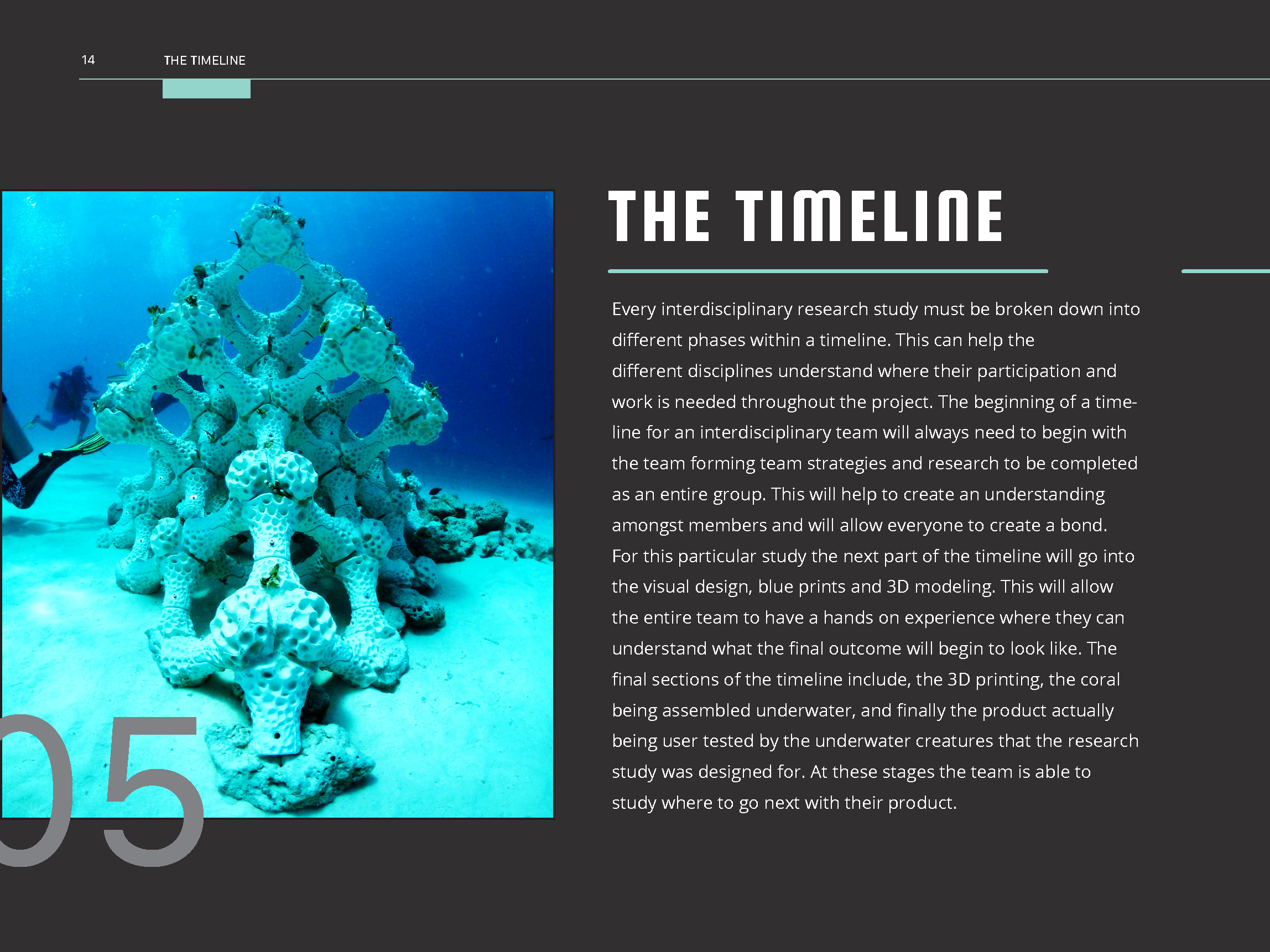 Coral_Reef_Handbook_Pages_Page_16.png