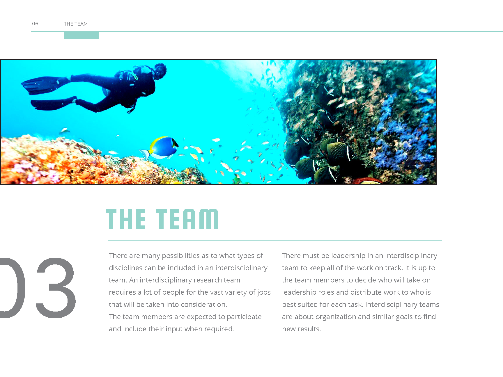 Coral_Reef_Handbook_Pages_Page_08.png