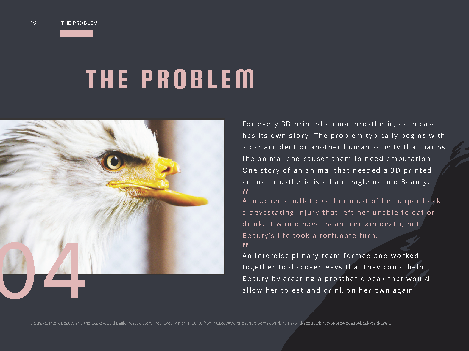 Animal Prosthetic Handbook-Pages_Page_12.png