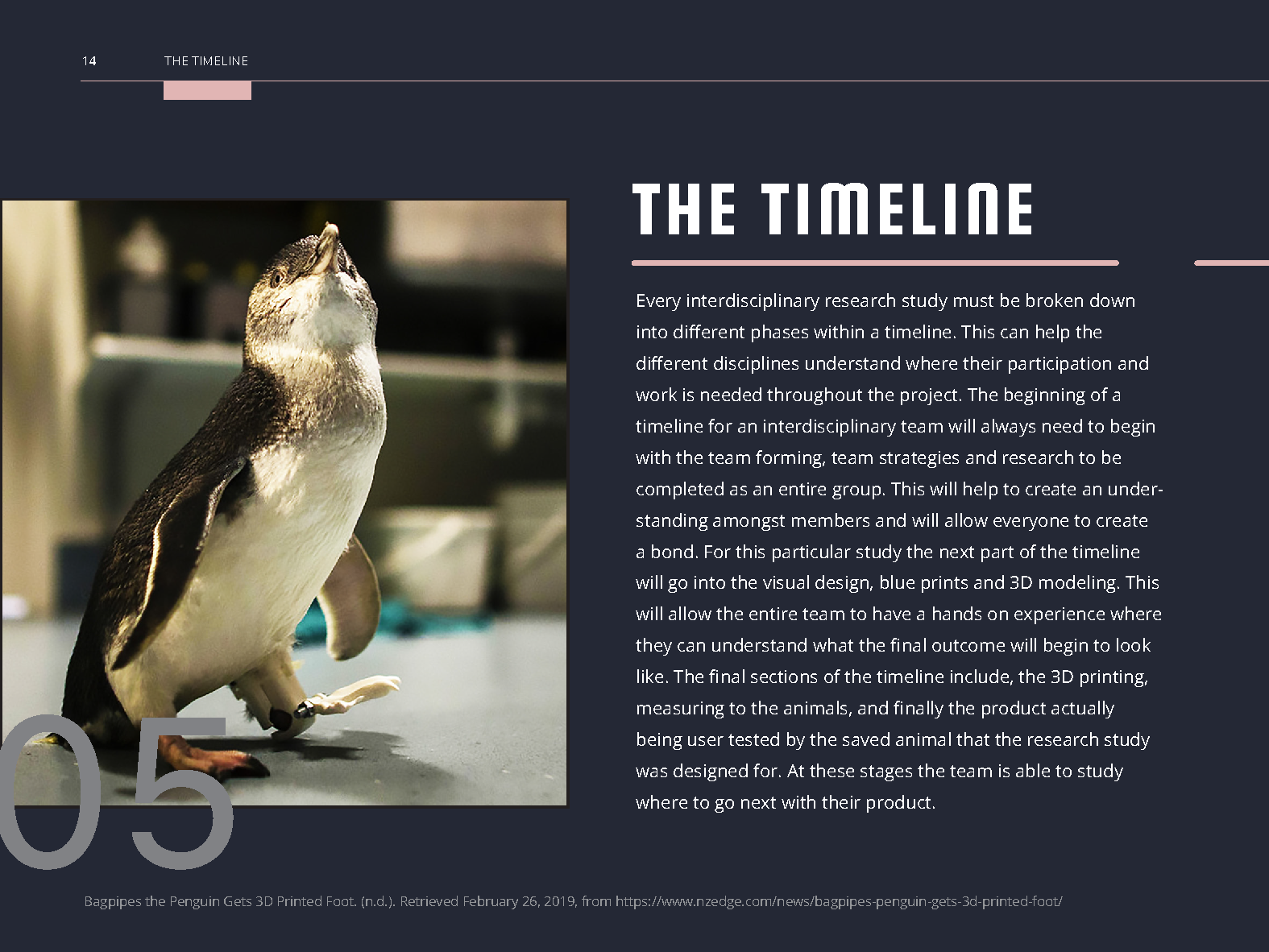 Animal Prosthetic Handbook-Pages_Page_16.png