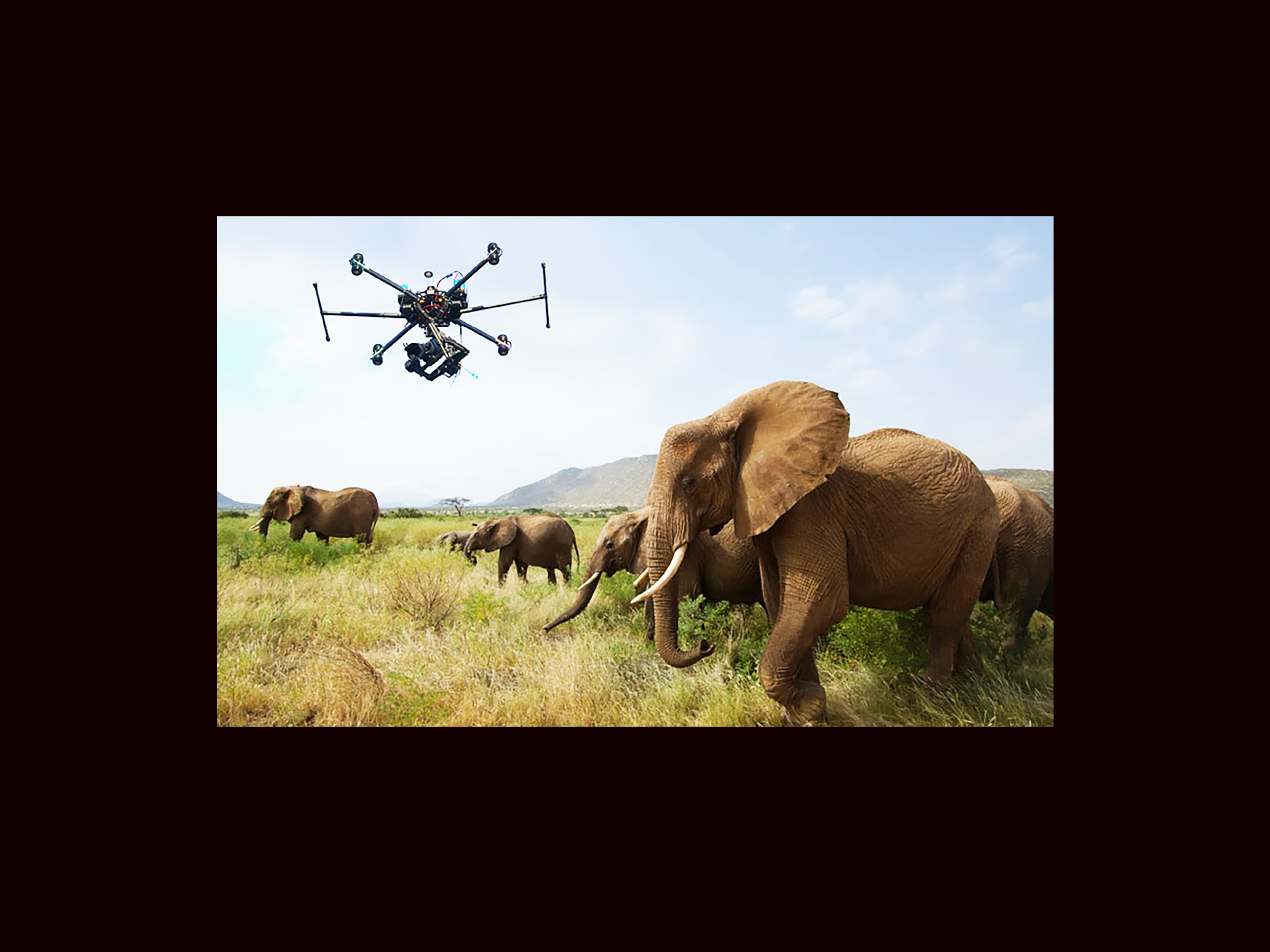 Catching Poachers with Drones- Pages_Page_21.png