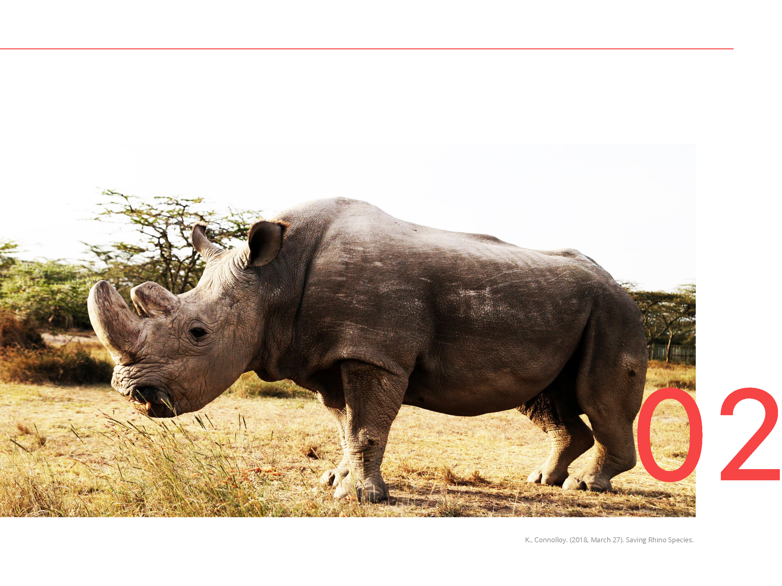 Catching Poachers with Drones- Pages_Page_07.png