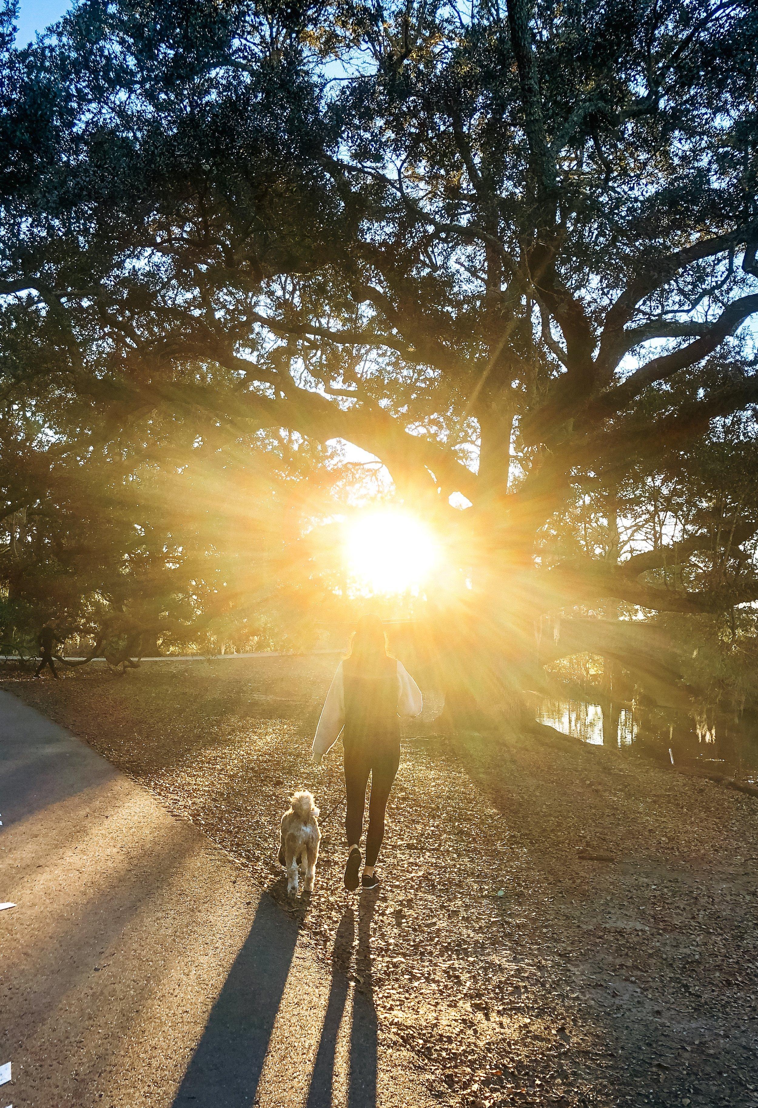 Walking into 2019 like with a hopeful heart and the best doggo I know…
