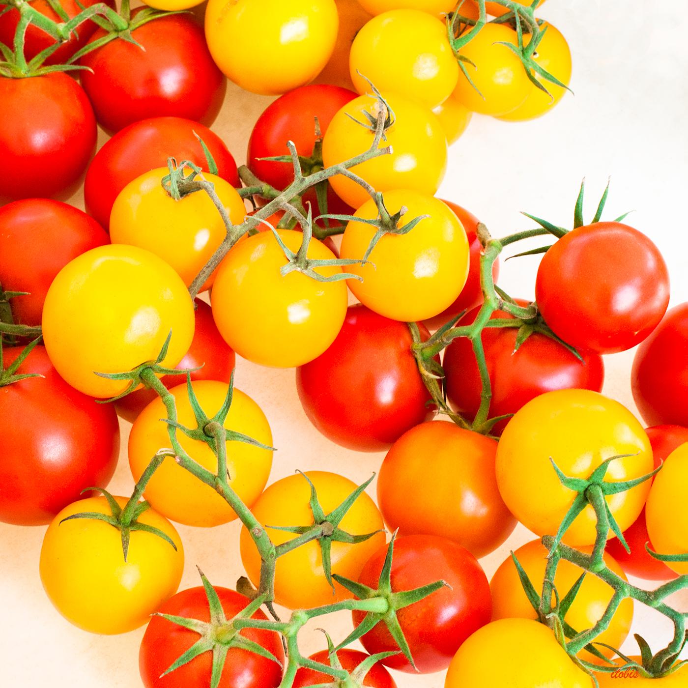KITCHEN PHOTO BOARD : Tomatoes on the Vine - Ingleside Tomatoes - Ottawa Farmers' Market, Lansdowne Park - photo by Irene Tobis