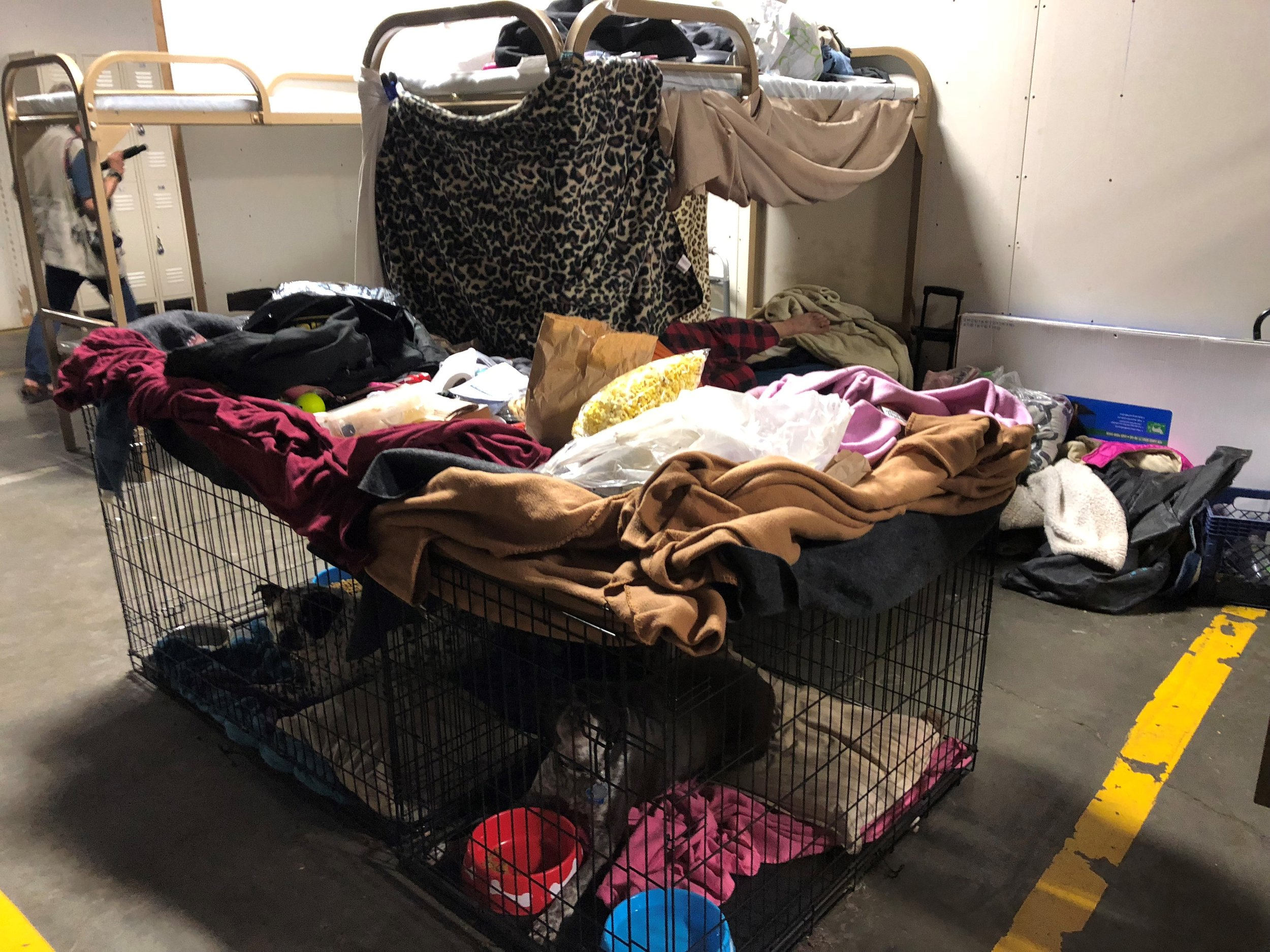 Residents have used blankets to create privacy in their bunks. One thing that sets the Triage Center apart from other shelters is that it accepts pets.