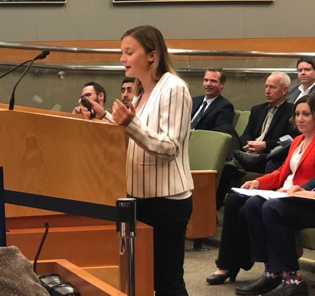 The idea for an interactive fountain came from Inderkum High School sophmore Summer Santich, who continued to work on the project with consultants hired by the city and presented several options Tuesday.