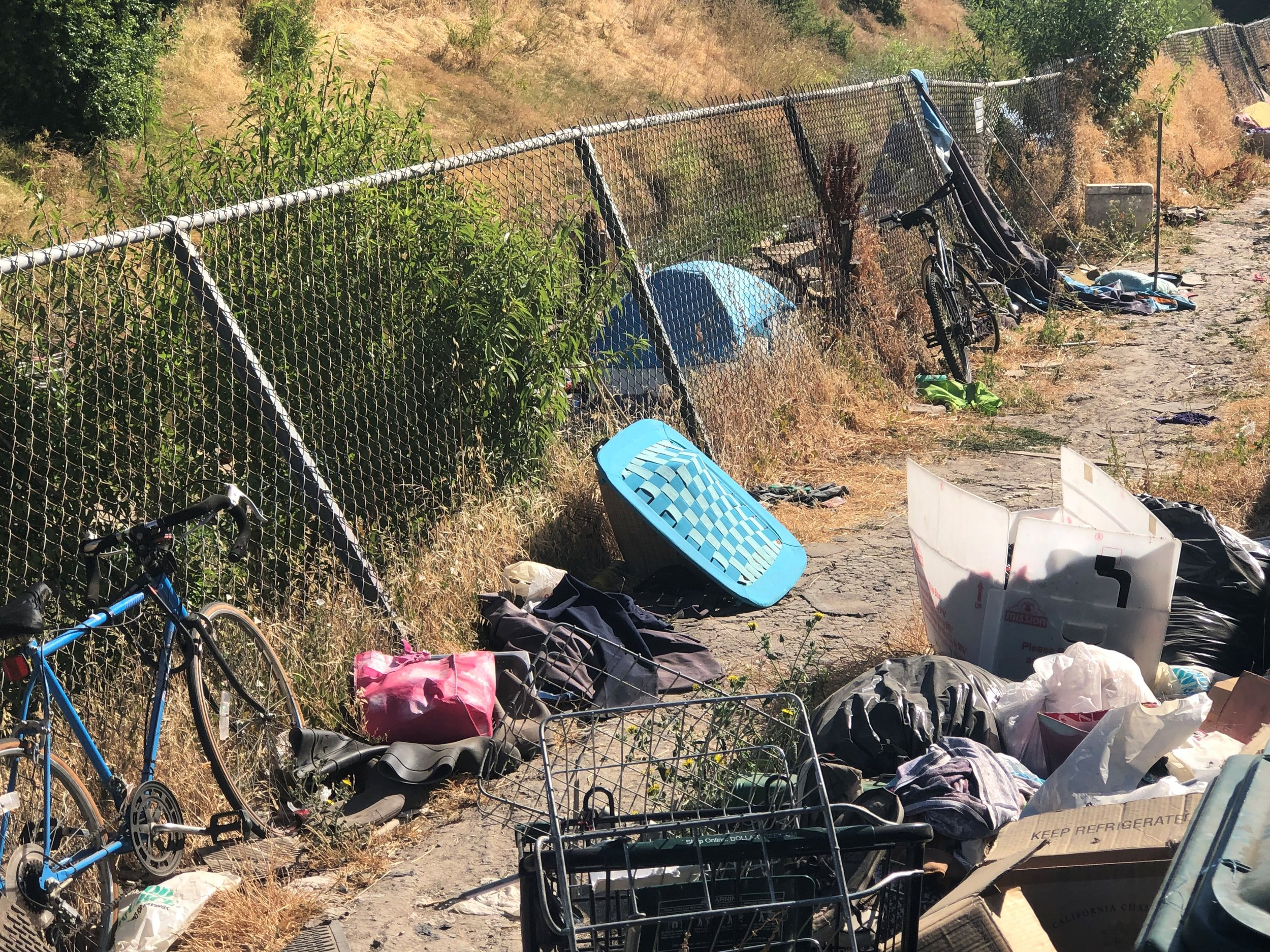 A homeless camp along Elder Creek in south Sacramento