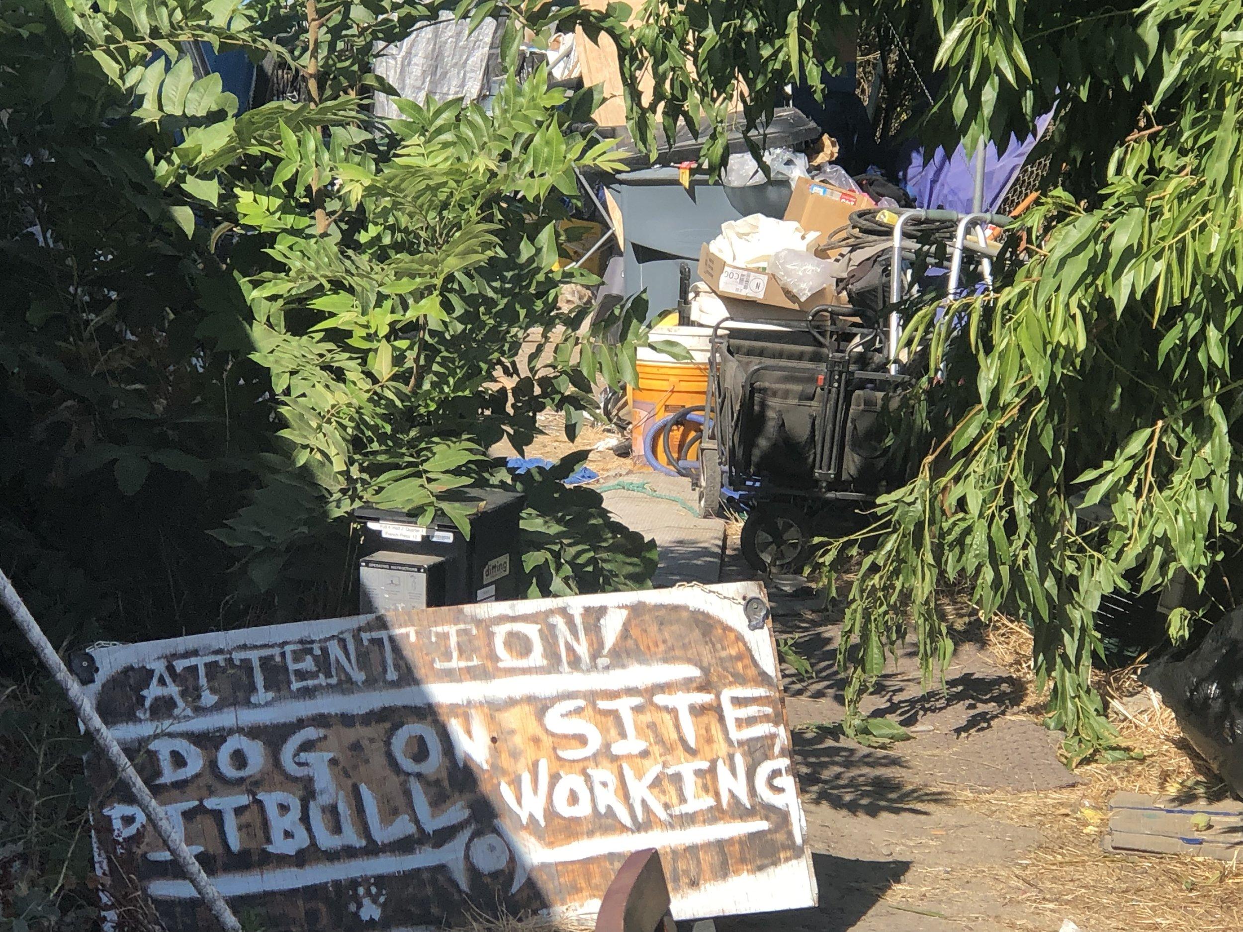 A homeless camp in south Sacramento