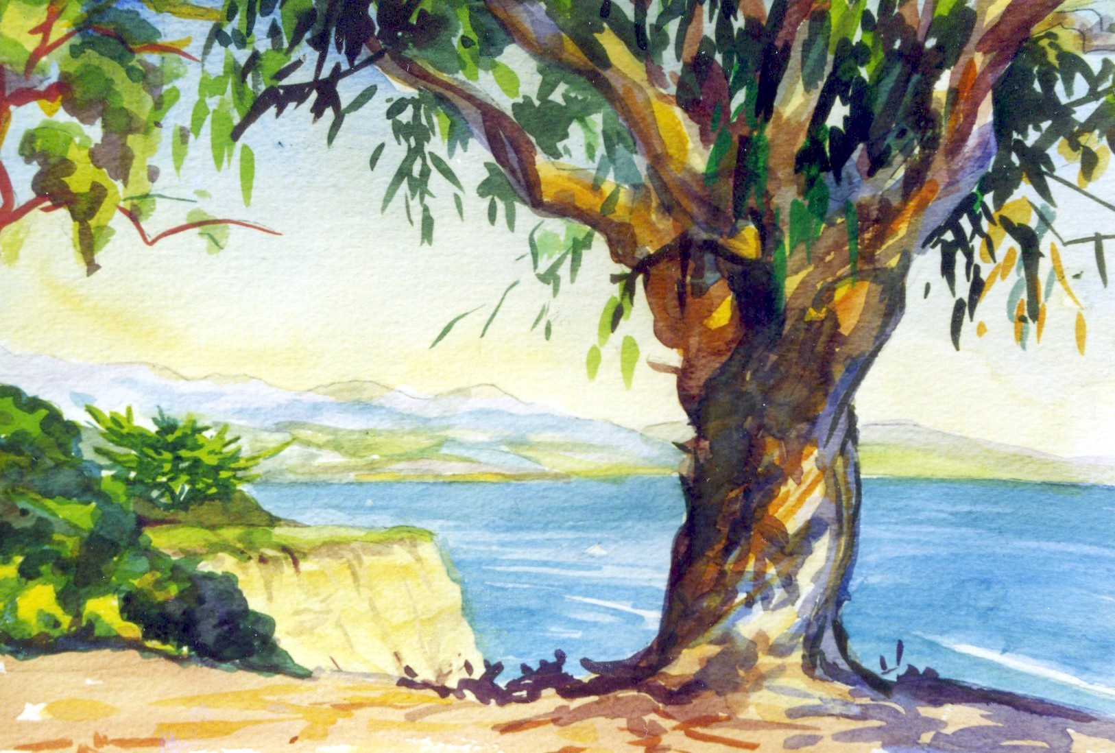 tree_on_cliff.jpg