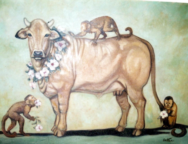 first_cow.jpg