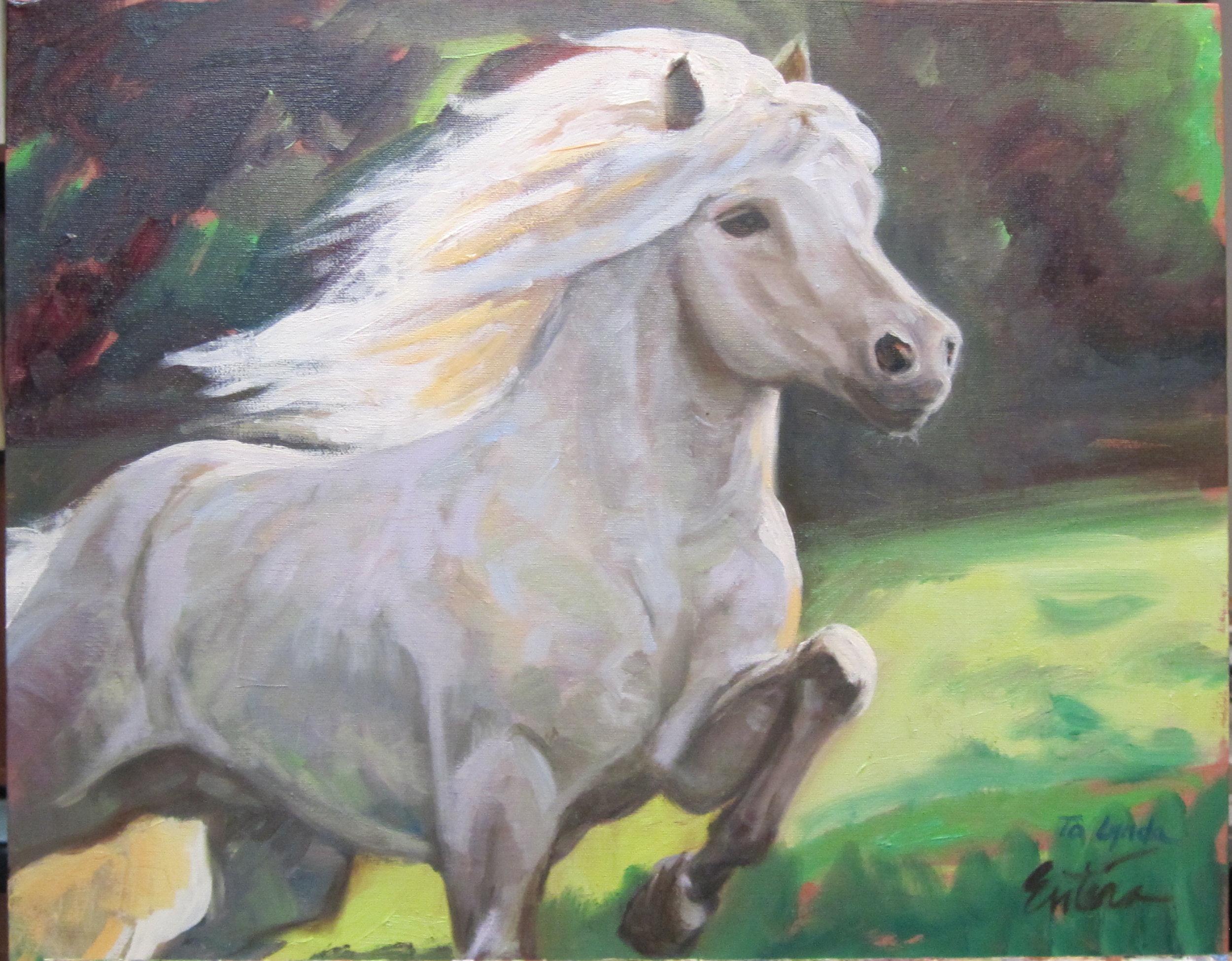 Lynda_s horse.jpg