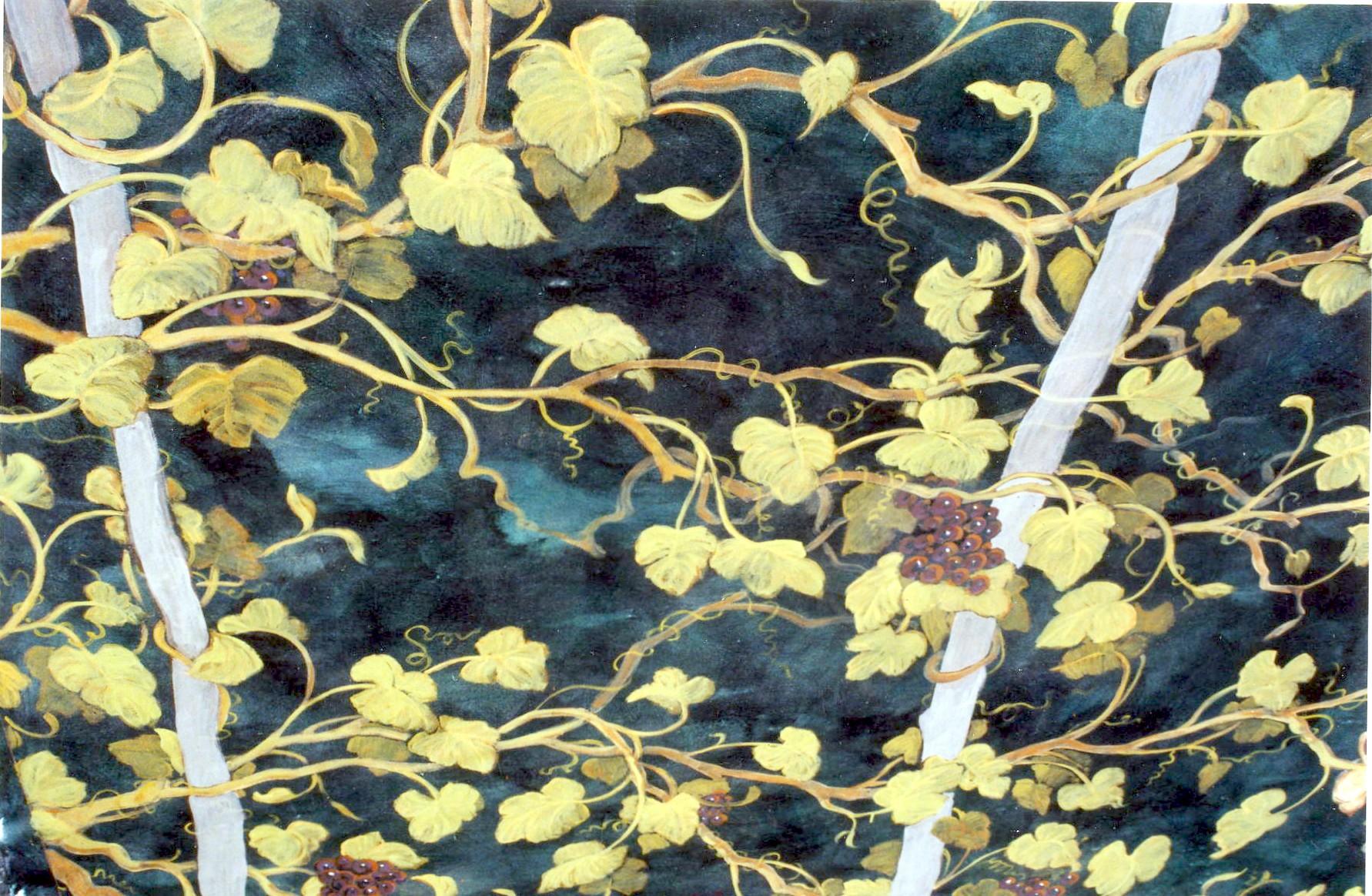 ceiling_grapevine.jpg