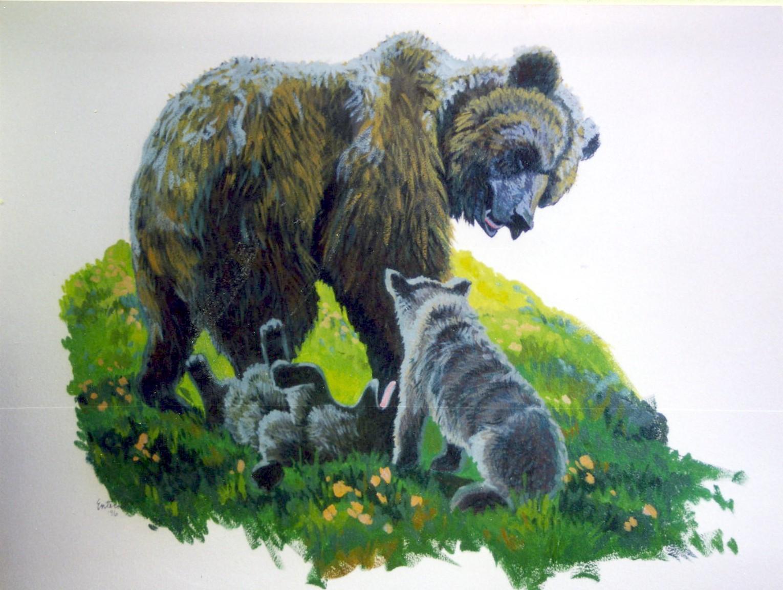 vet_bear.jpg