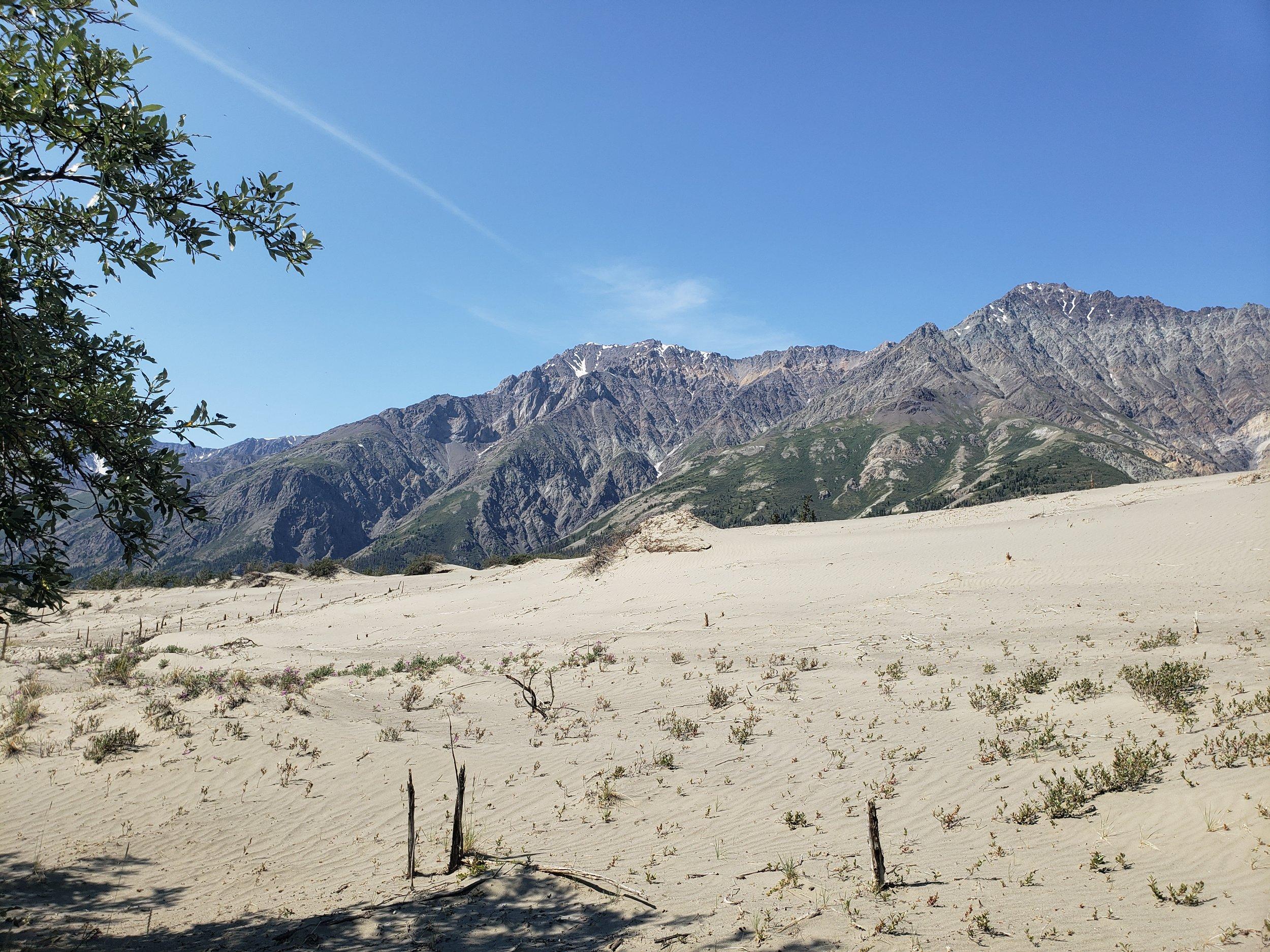 The sand dunes made us feel like we were walking on the beach.