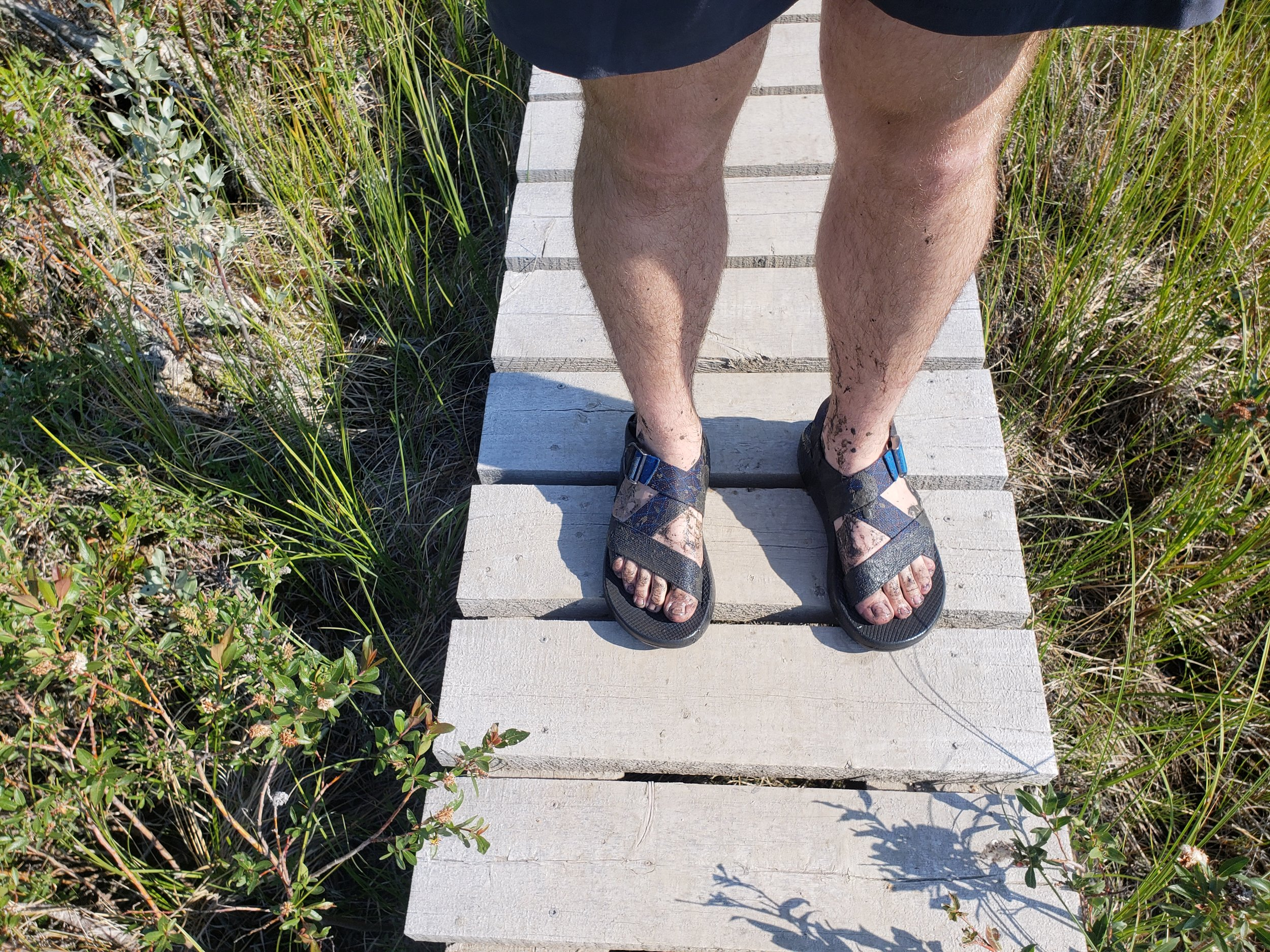 Ian's feet did not stay dry for long. There are random boardwalks throughout the trail, but they don't keep you from walking through standing water.